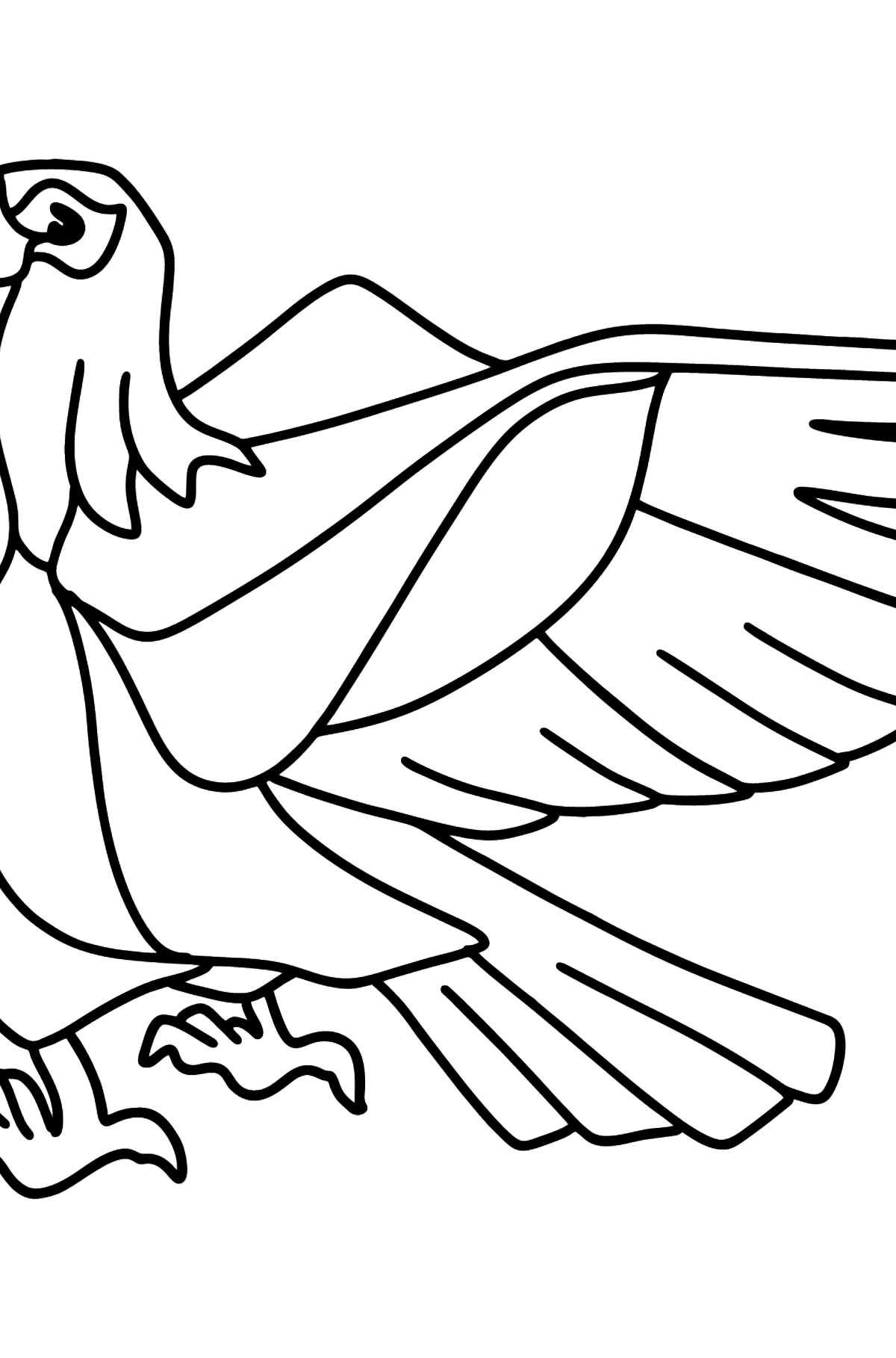 Beautiful Eagle coloring page - Coloring Pages for Kids