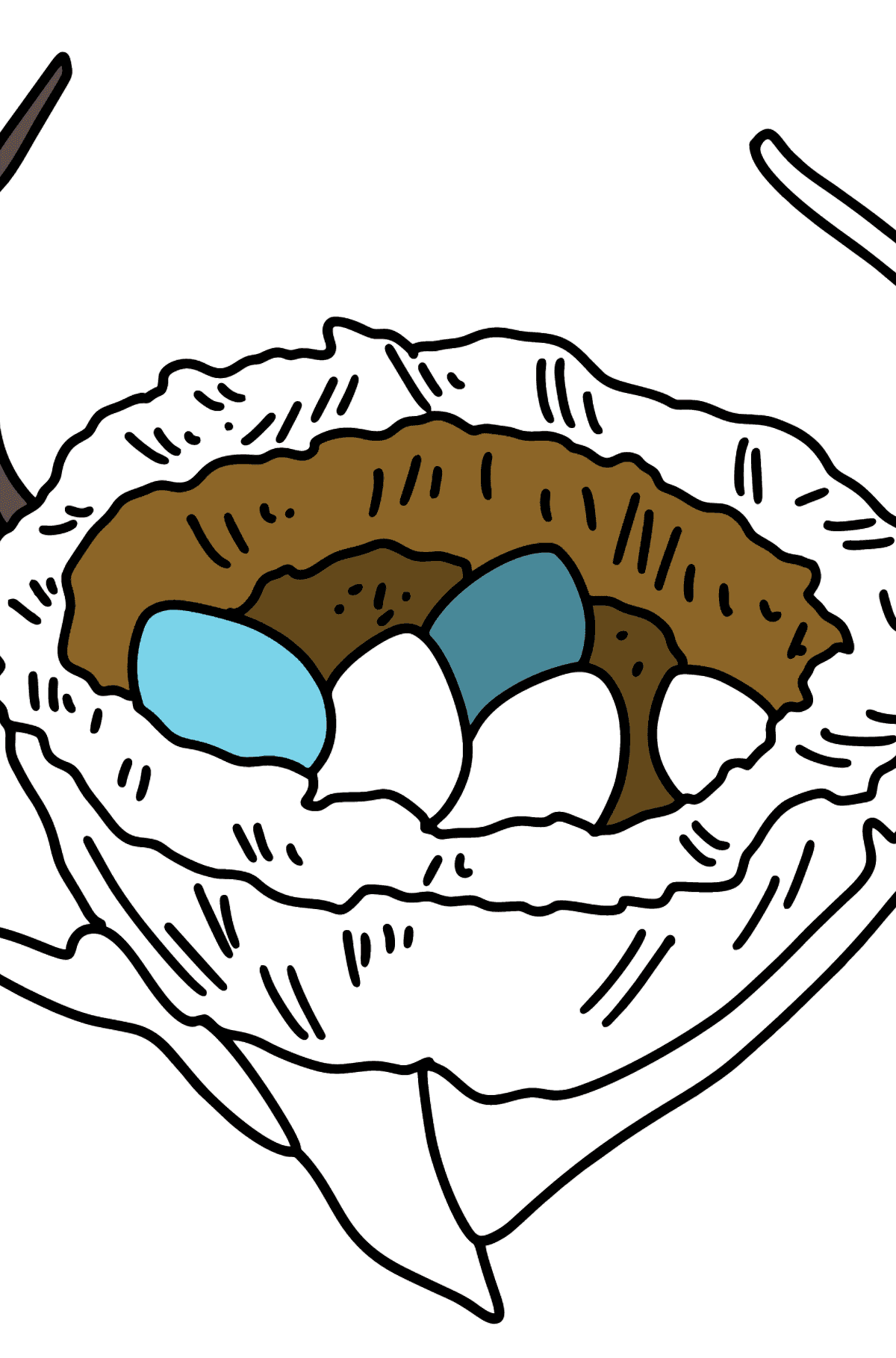 Bird's Nest coloring page - Coloring Pages for Kids