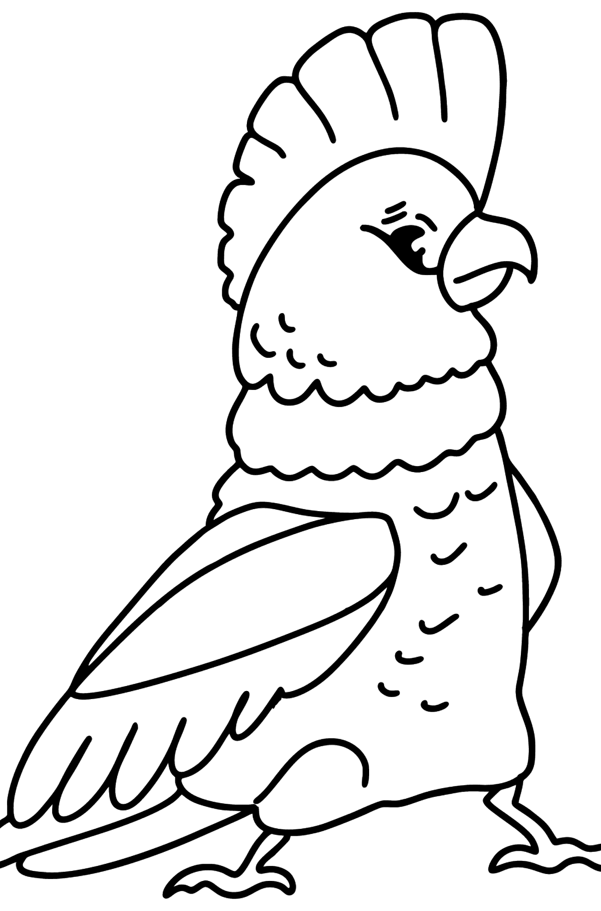 Раскраска какаду - Картинки для Детей