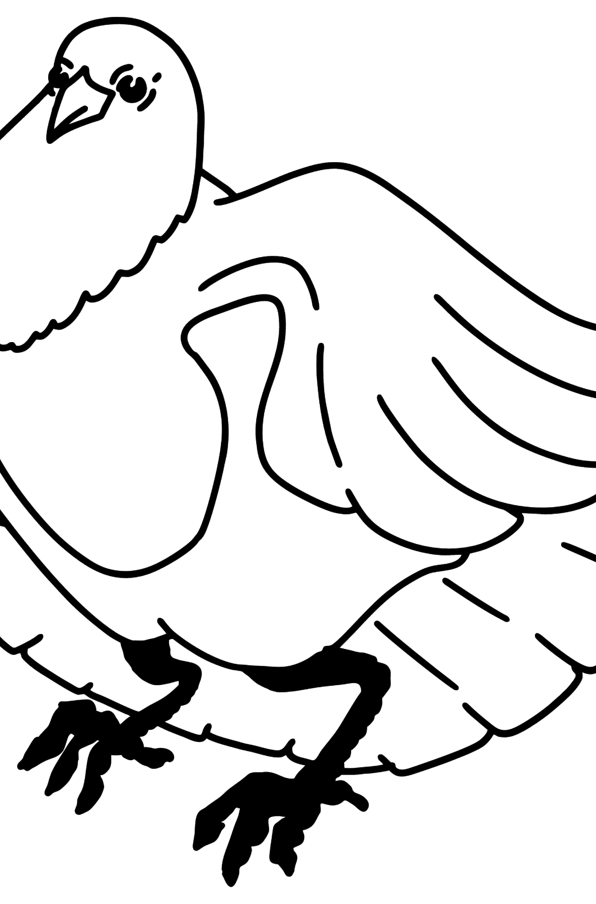 Dove coloring page - Coloring Pages for Kids