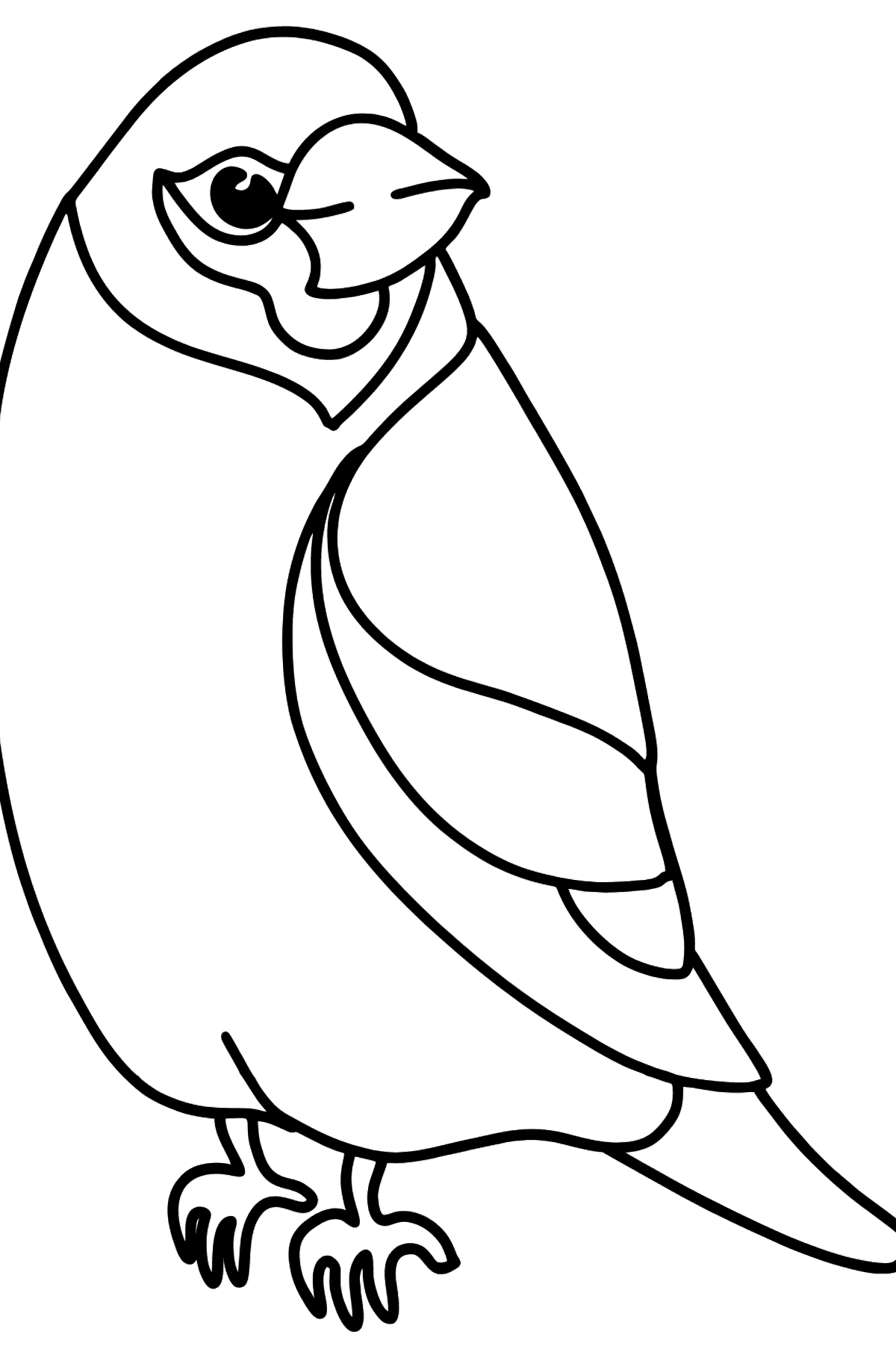 Grosbeak coloring page - Coloring Pages for Kids
