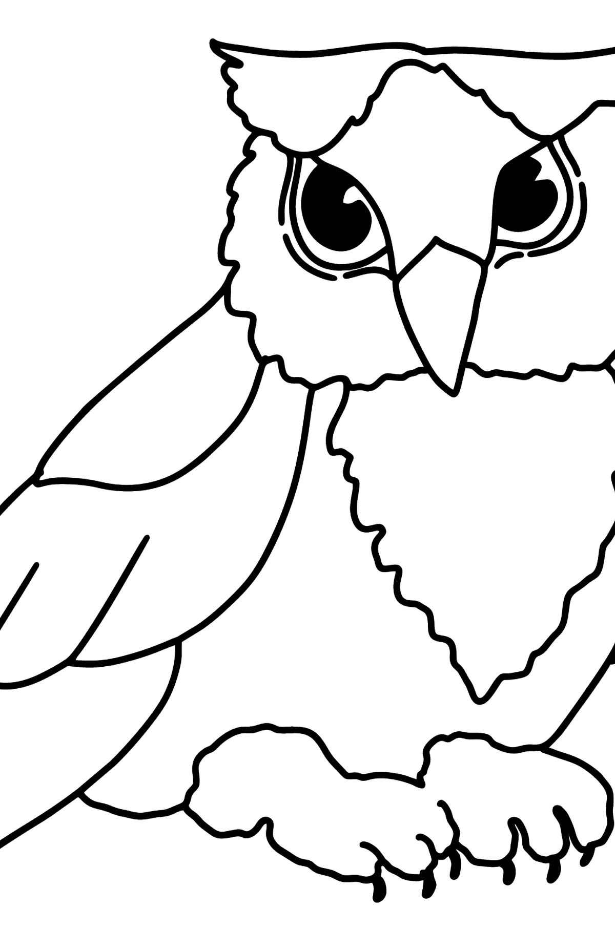 Bird coloring page - Owlet - Coloring Pages for Kids