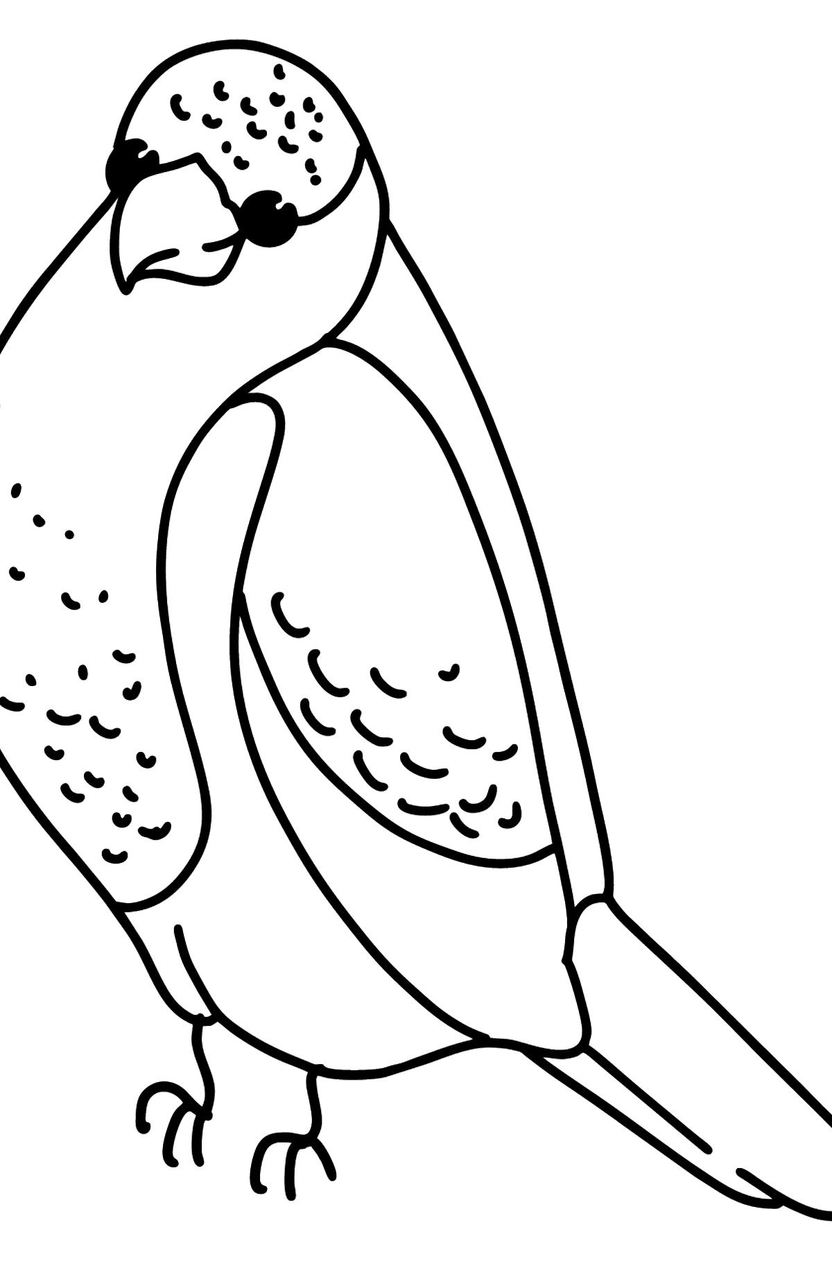 Simple coloring page with a Parrot - Coloring Pages for Kids