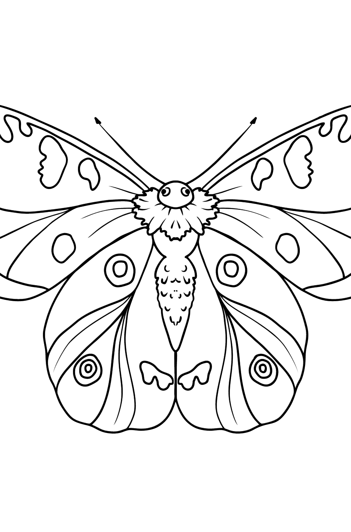 Apollo Butterfly coloring page - Coloring Pages for Kids