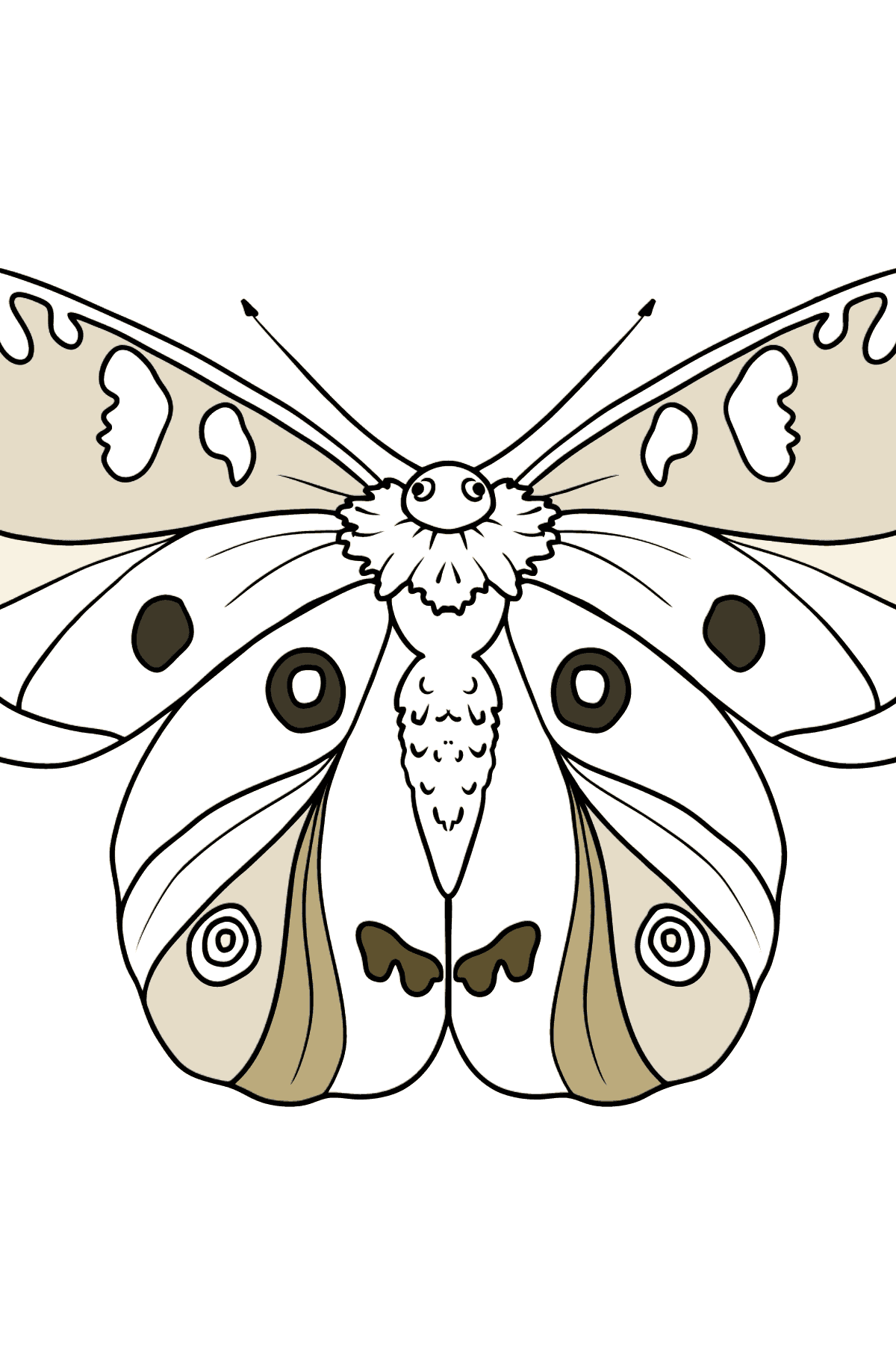 Apollo Butterfly coloring page
