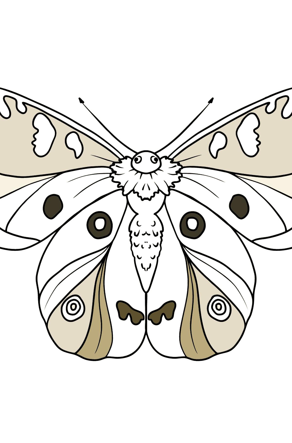 Desenho para colorir de Apollo Butterfly