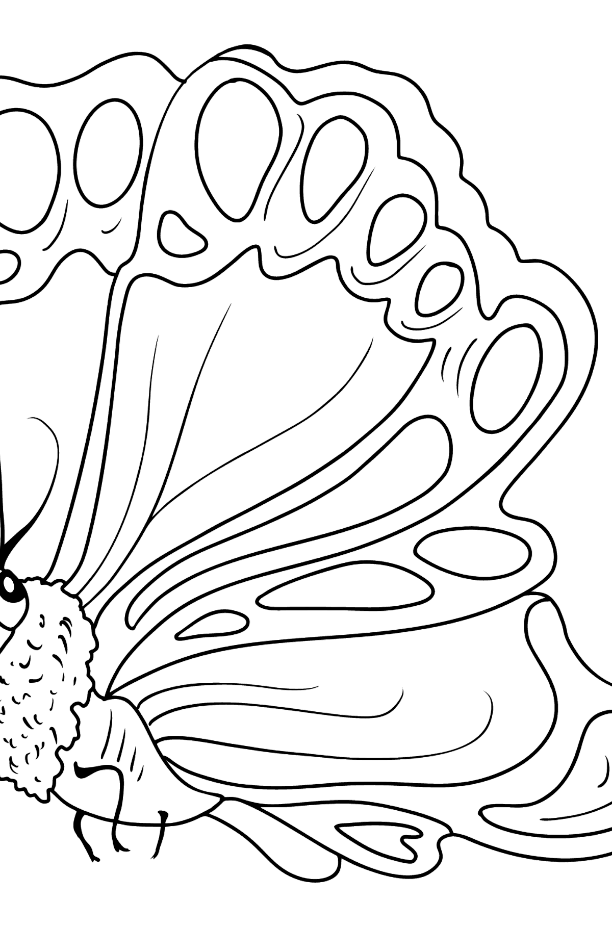 Butterfly Sideways coloring page - Coloring Pages for Kids