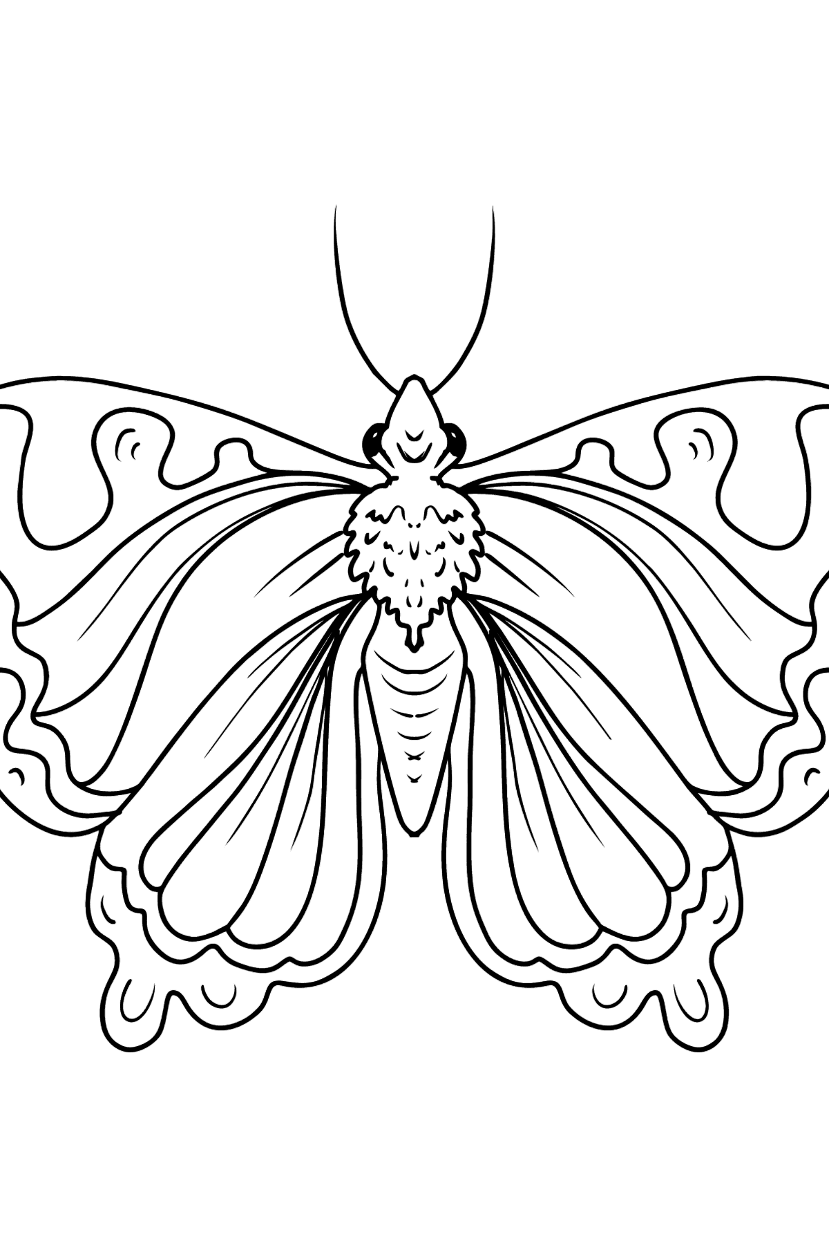 Cute Butterfly coloring page - Coloring Pages for Kids
