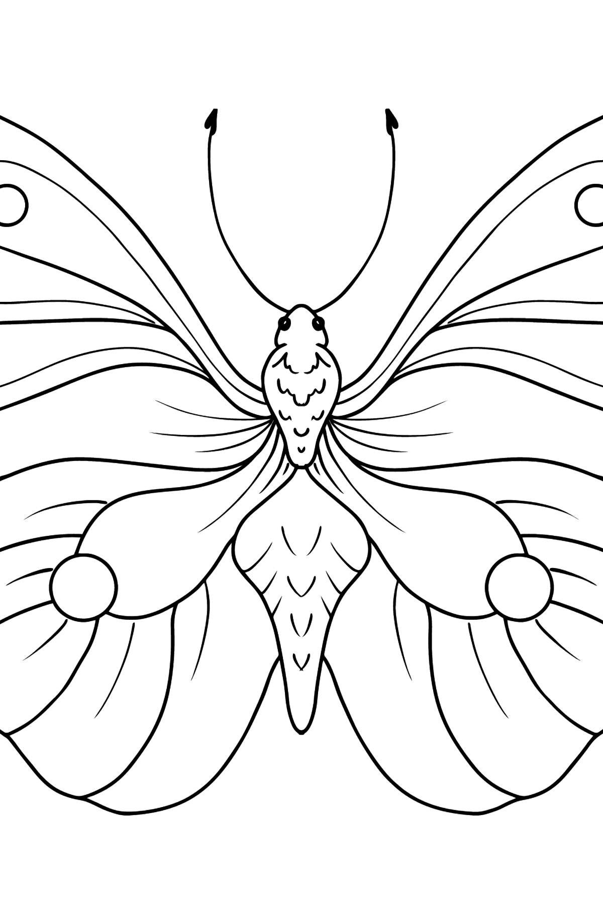 Lemongrass Butterfly coloring page - Coloring Pages for Kids