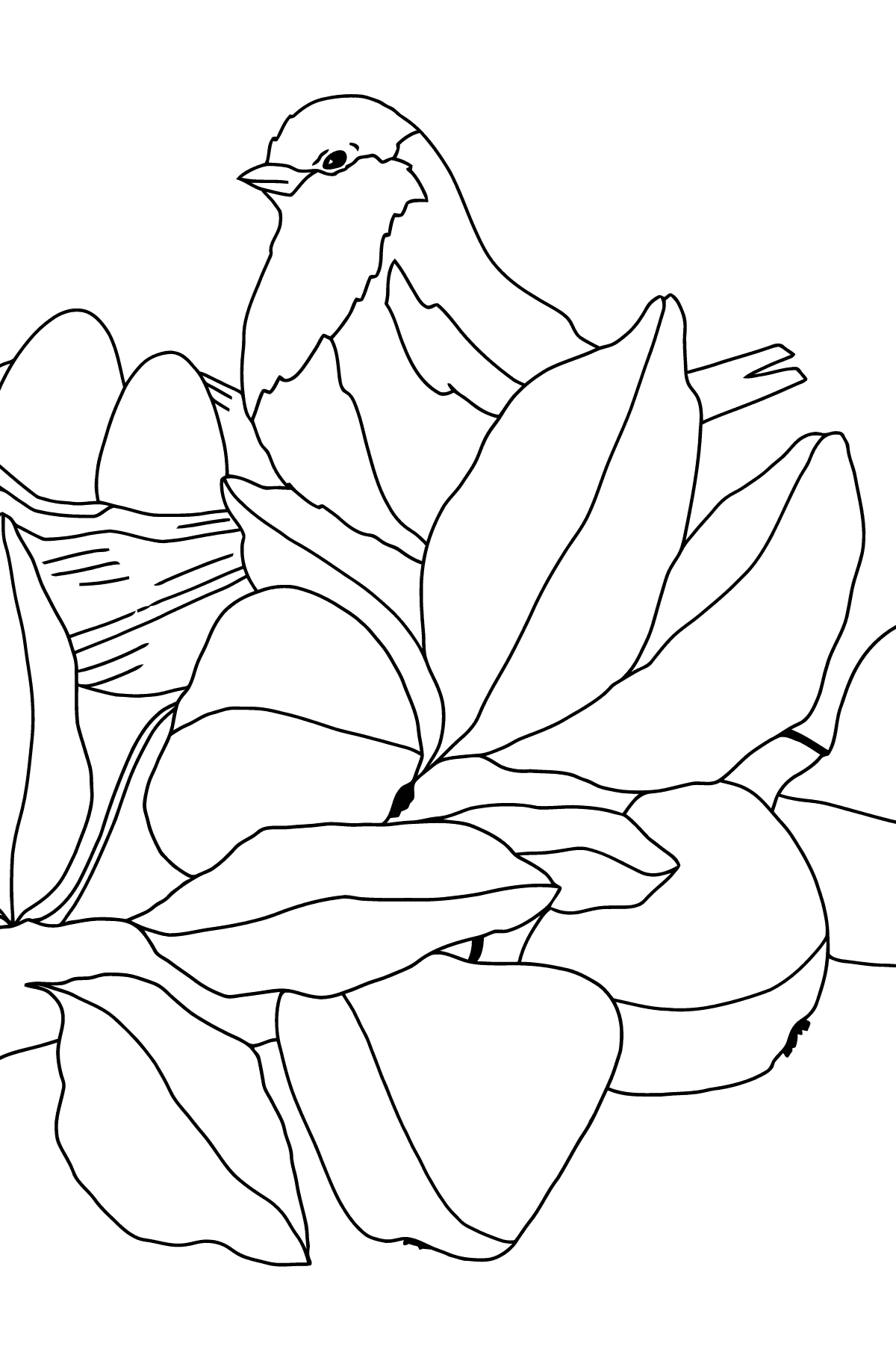 Spring Coloring Page - Time for Nestlings for Kids