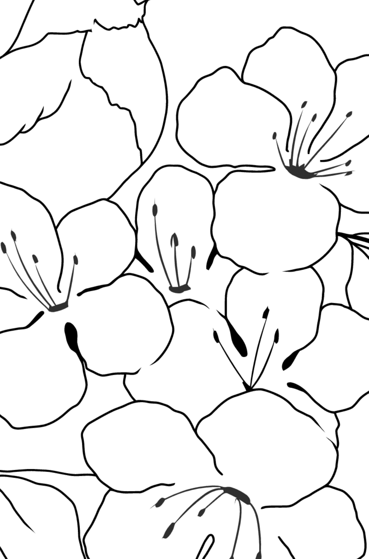 Summer Coloring Page - A Bird is Chirping on a Branch with Flowers for Children  - Color by Number Addition