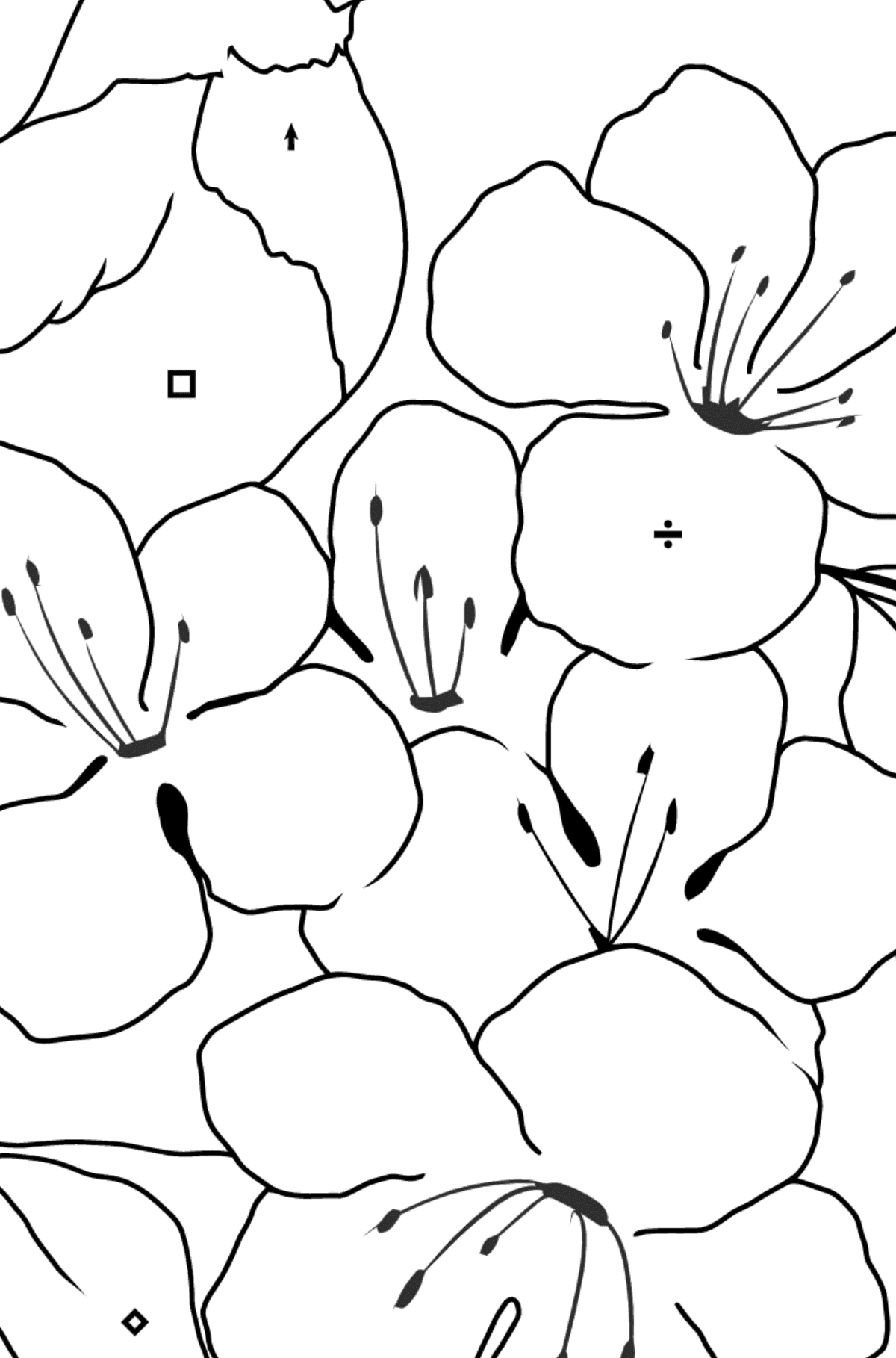 Summer Coloring Page - A Bird is Chirping on a Branch with Flowers for Children  - Color by Special Symbols