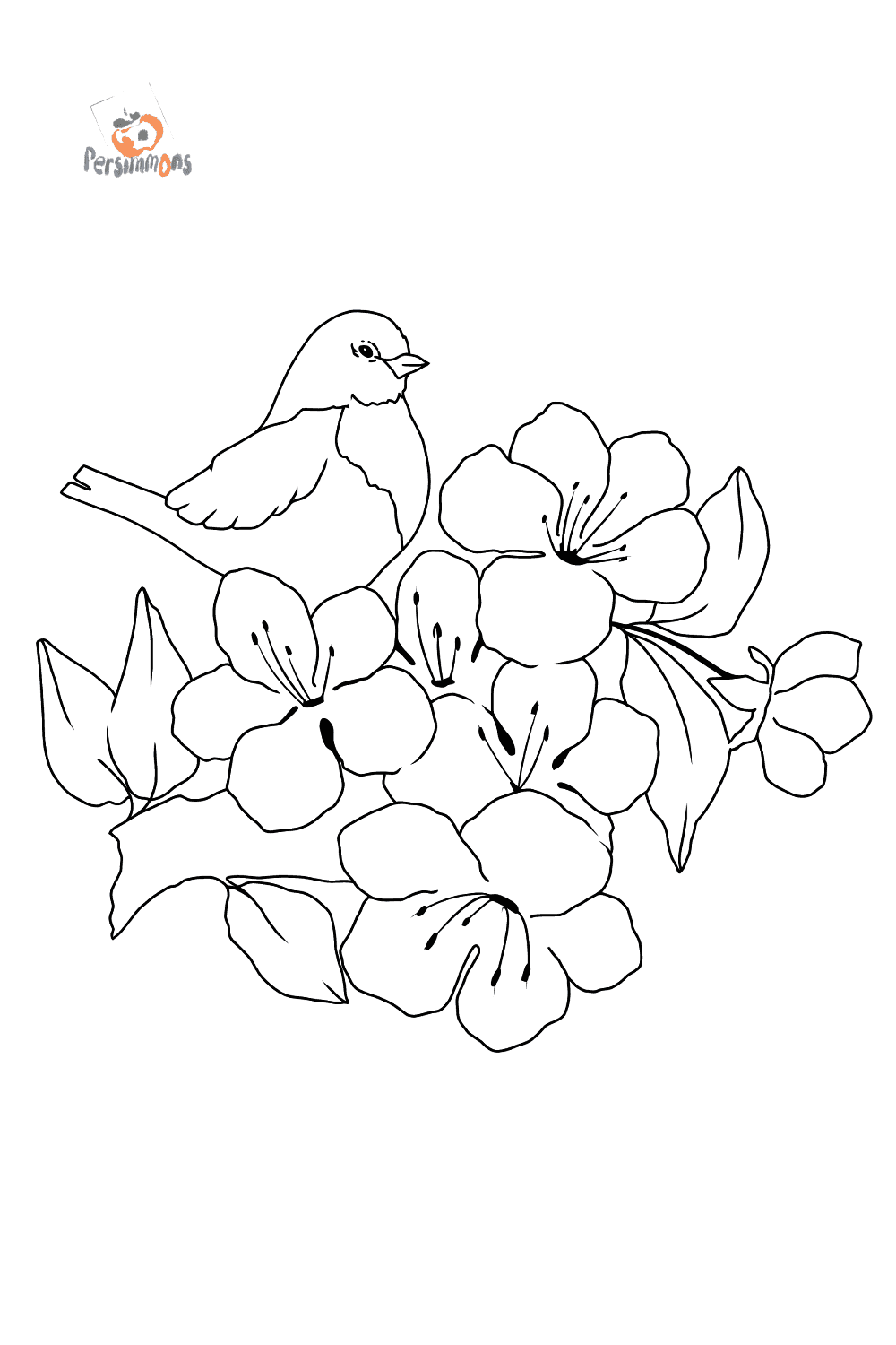 Summer Coloring Page Bird Download Print A4 And Color Online