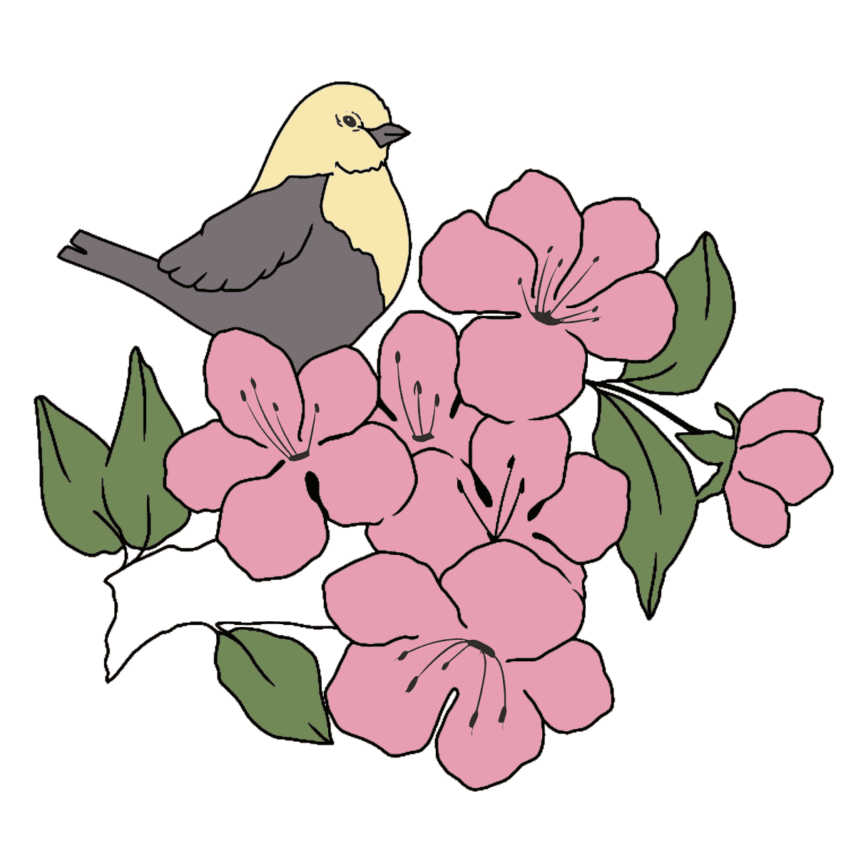 Summer Coloring Page - A Bird is Chirping on a Branch with Flowers