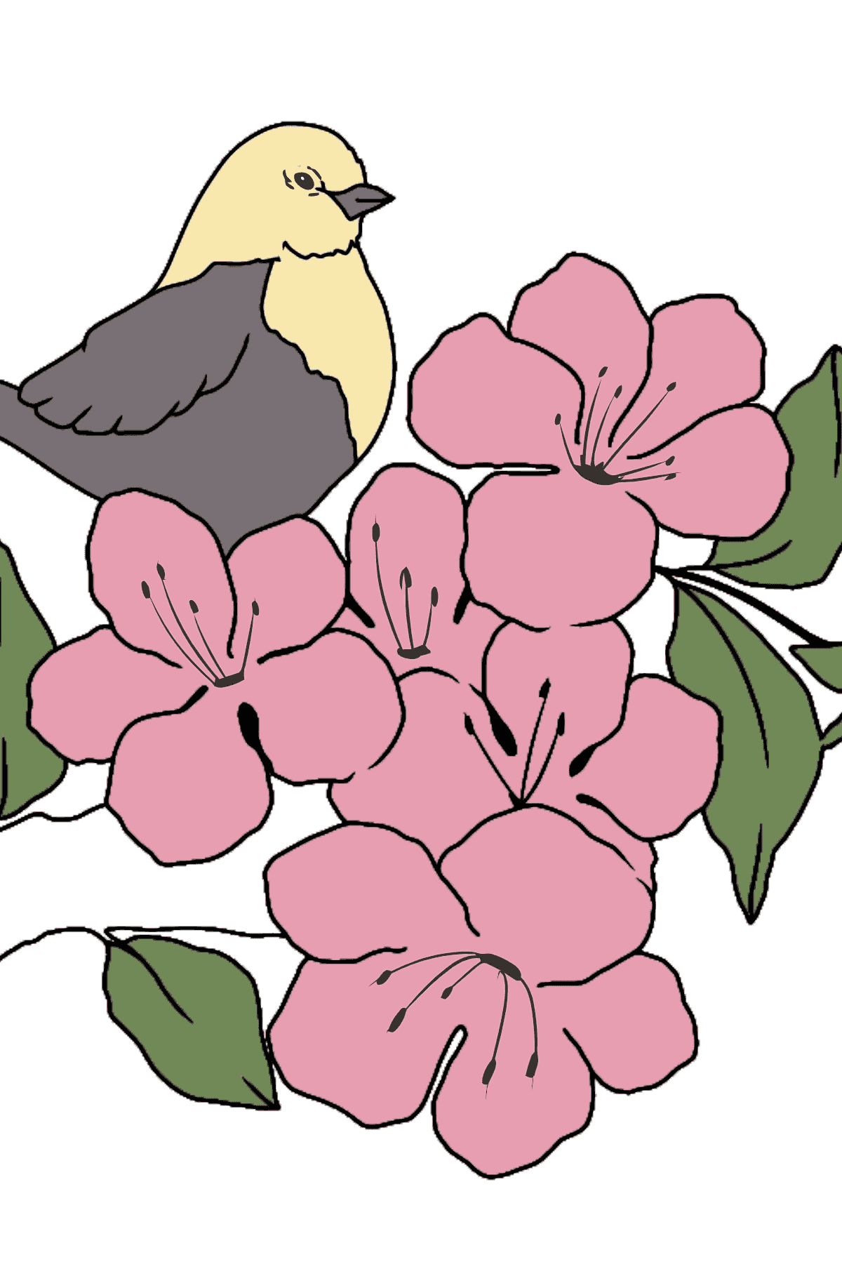 Summer Coloring Page - A Bird is Chirping on a Branch with Flowers for Children