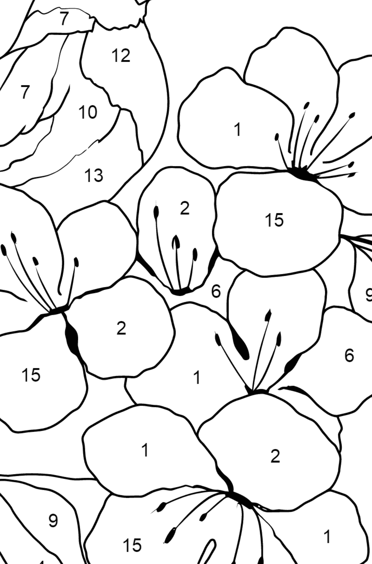 Summer Coloring Page - A Bird is Chirping on the Branch of an Apple Tree for Kids  - Color by Number