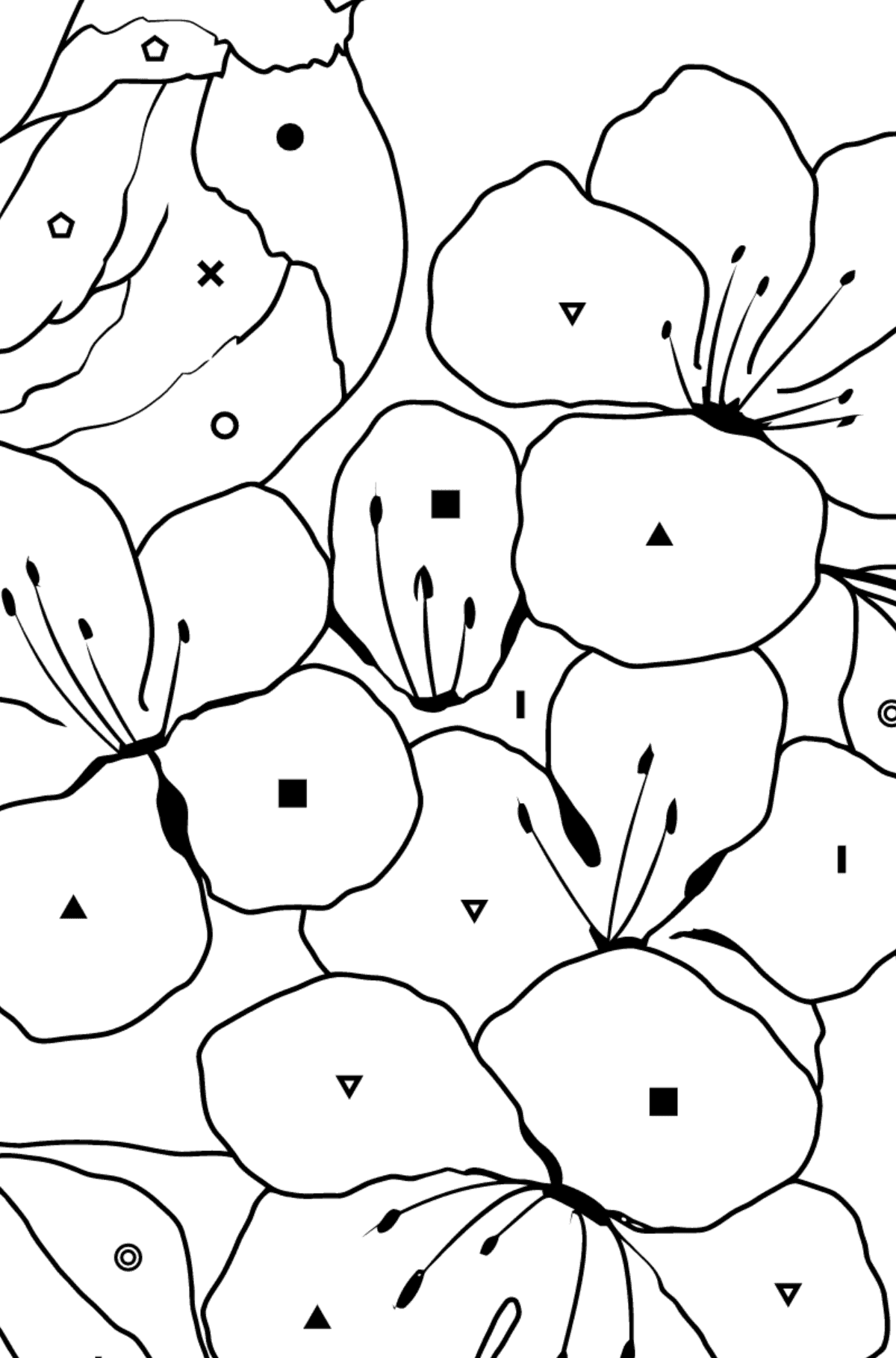 Summer Coloring Page - A Bird is Chirping on the Branch of an Apple Tree for Kids  - Color by Symbols and Geometric Shapes