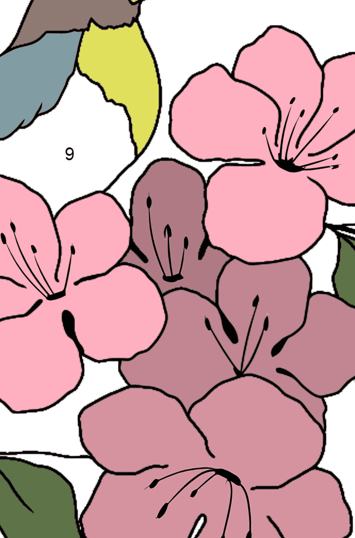 Summer Coloring Page - A Bird on a Branch with Flowers for Kids  - Color by Number