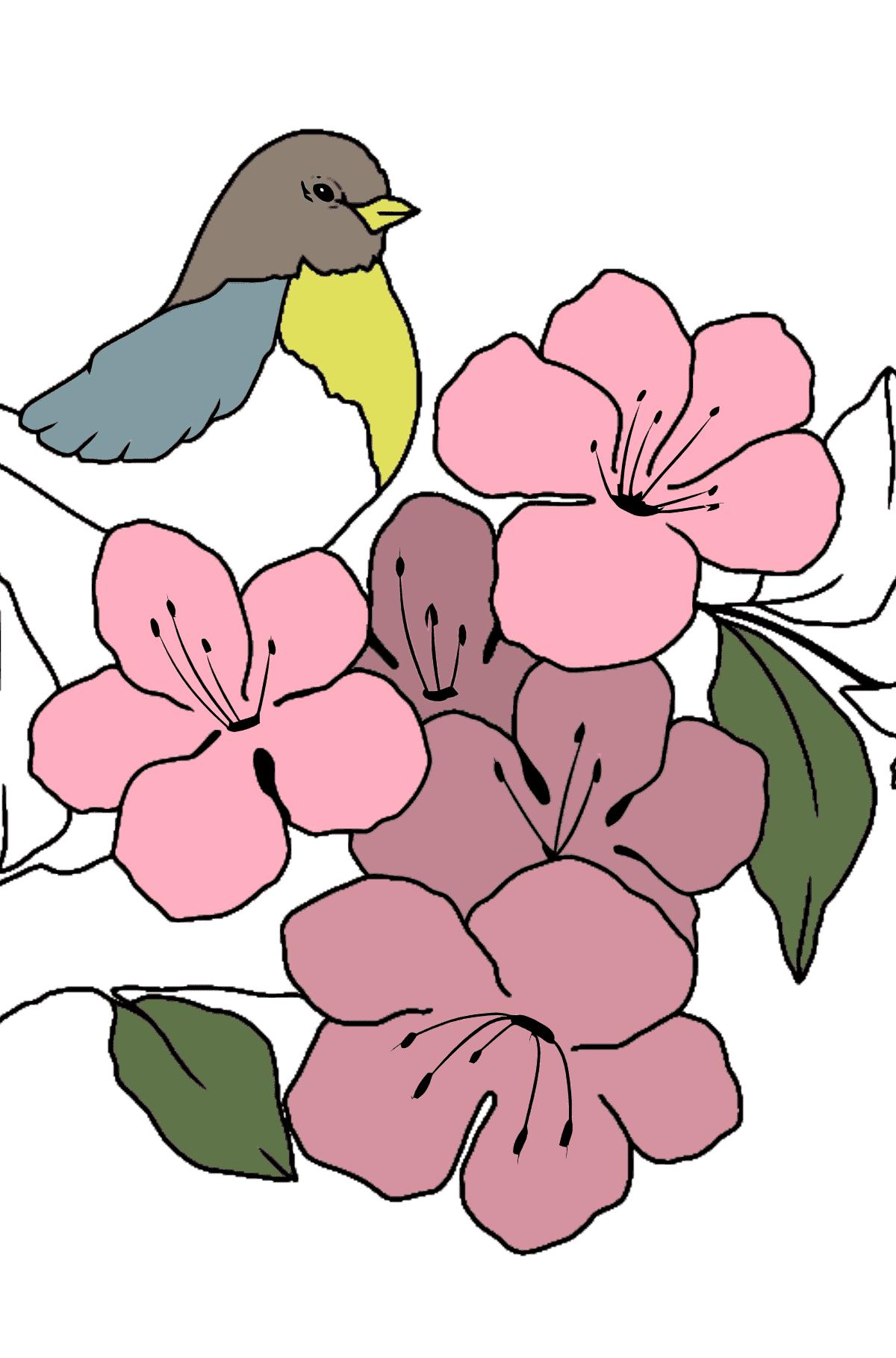 Coloriage les 4 saisons