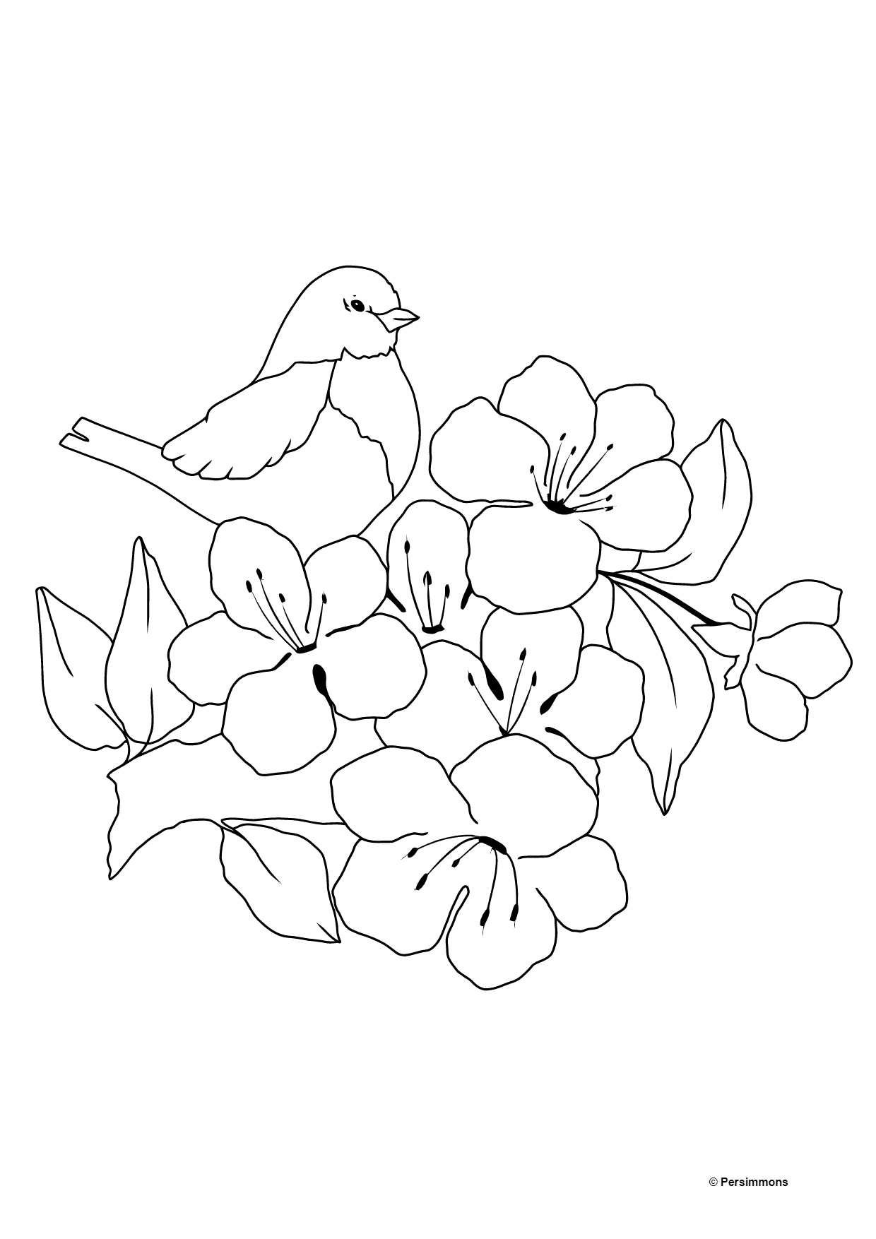 Summer Coloring Page - A Bird on a Branch with Flowers for Kids