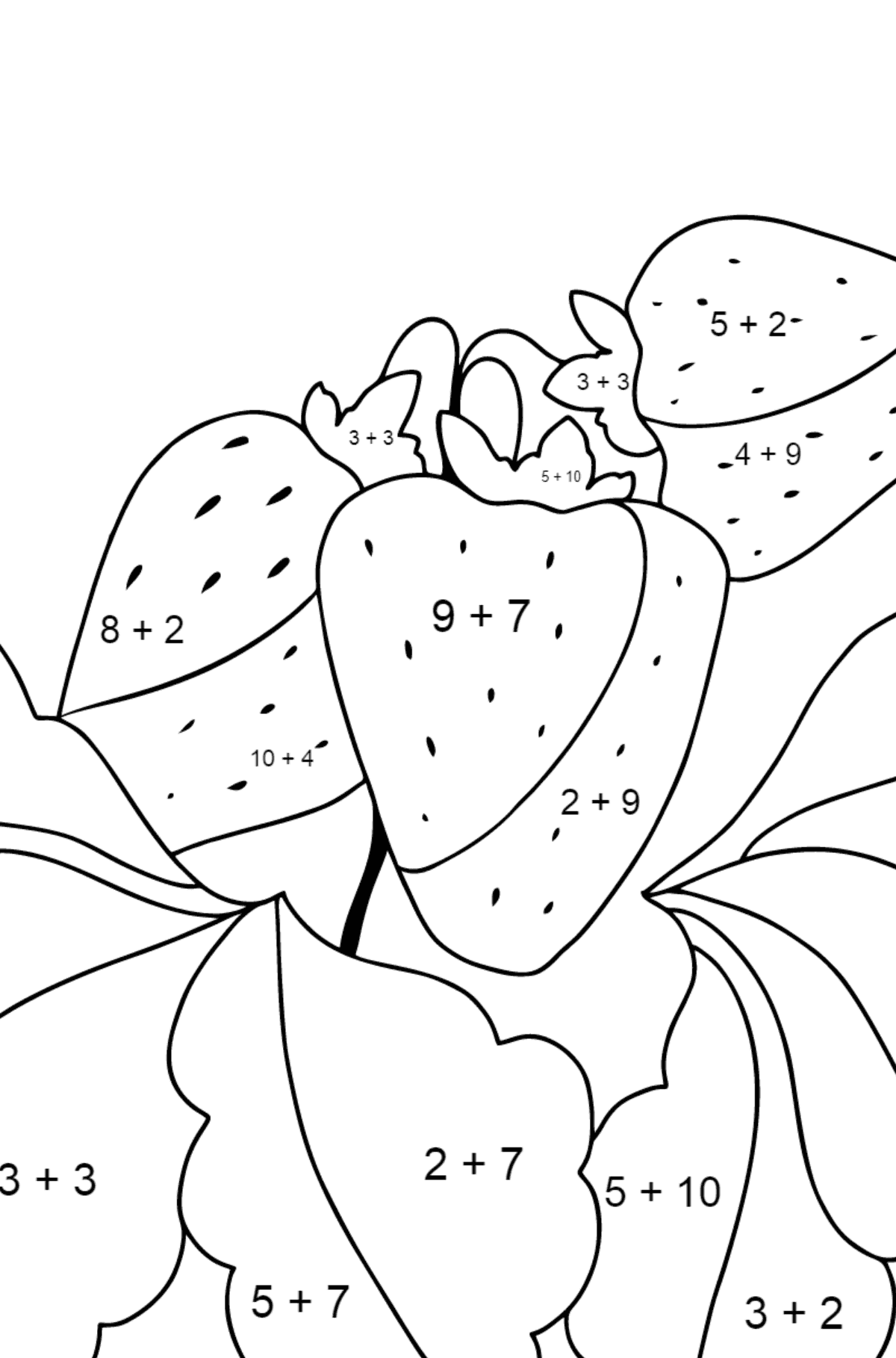 Summer Coloring Page - Strawberries are Ready on the Garden Bed - Math Coloring - Addition for Children