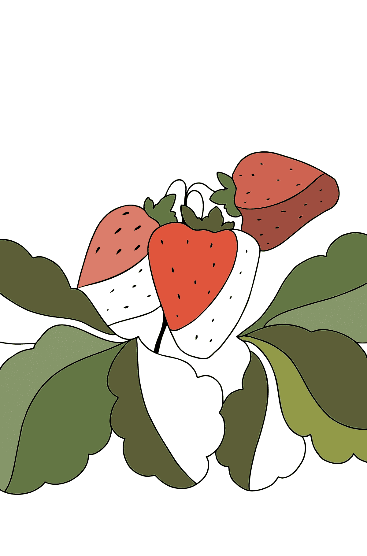 Summer Coloring Page - Strawberries are Ready on the Garden Bed - Coloring Pages for Children
