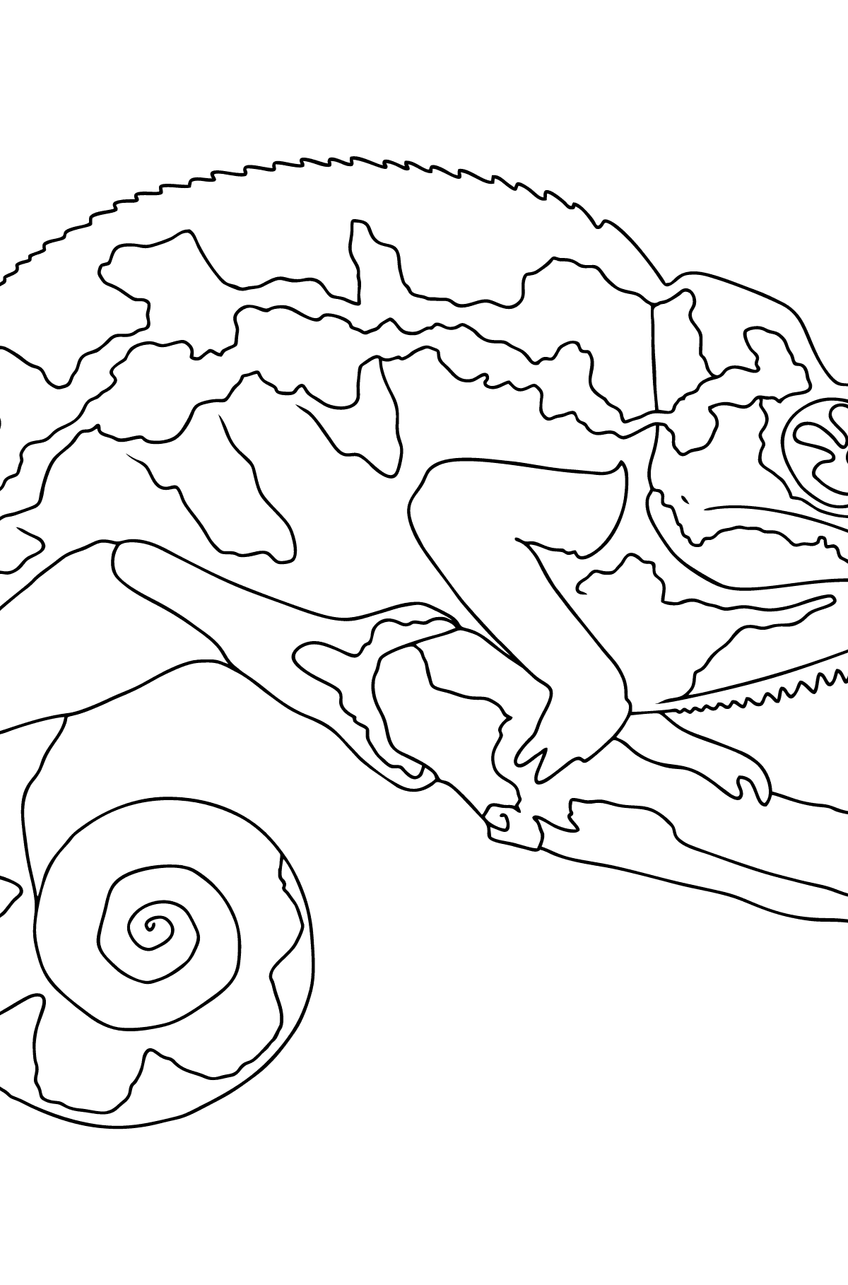Coloring Page - A Chameleon on a Branch - Coloring Pages for Kids