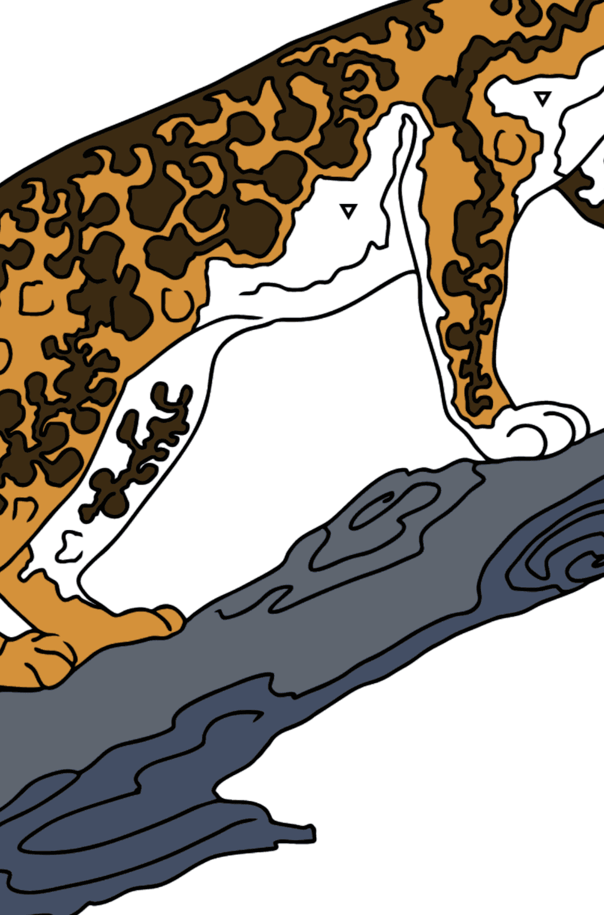 Coloring Page - A Leopard is Getting Ready for a Jump - Coloring by Symbols for Kids