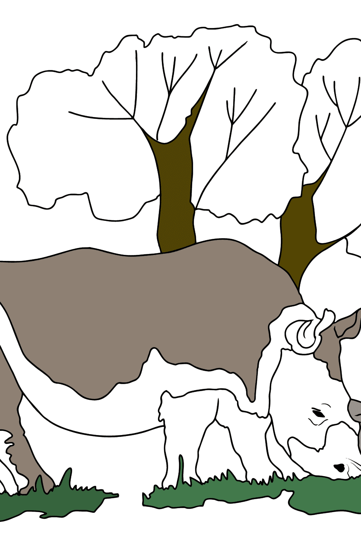 Coloring Page - A Massive Rhino - Coloring Pages for Kids