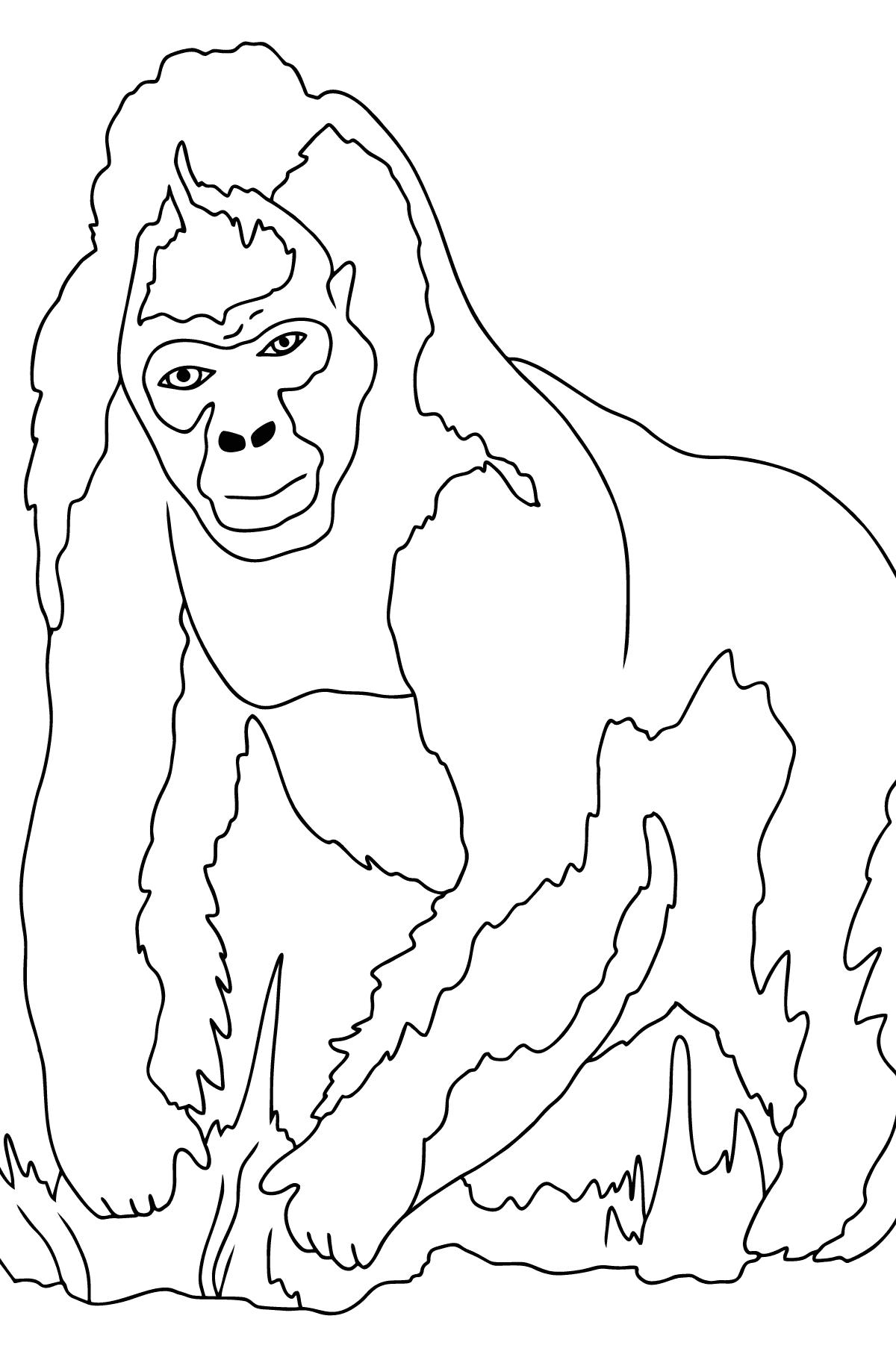Coloring Page - A Real Gorilla - Coloring Pages for Children