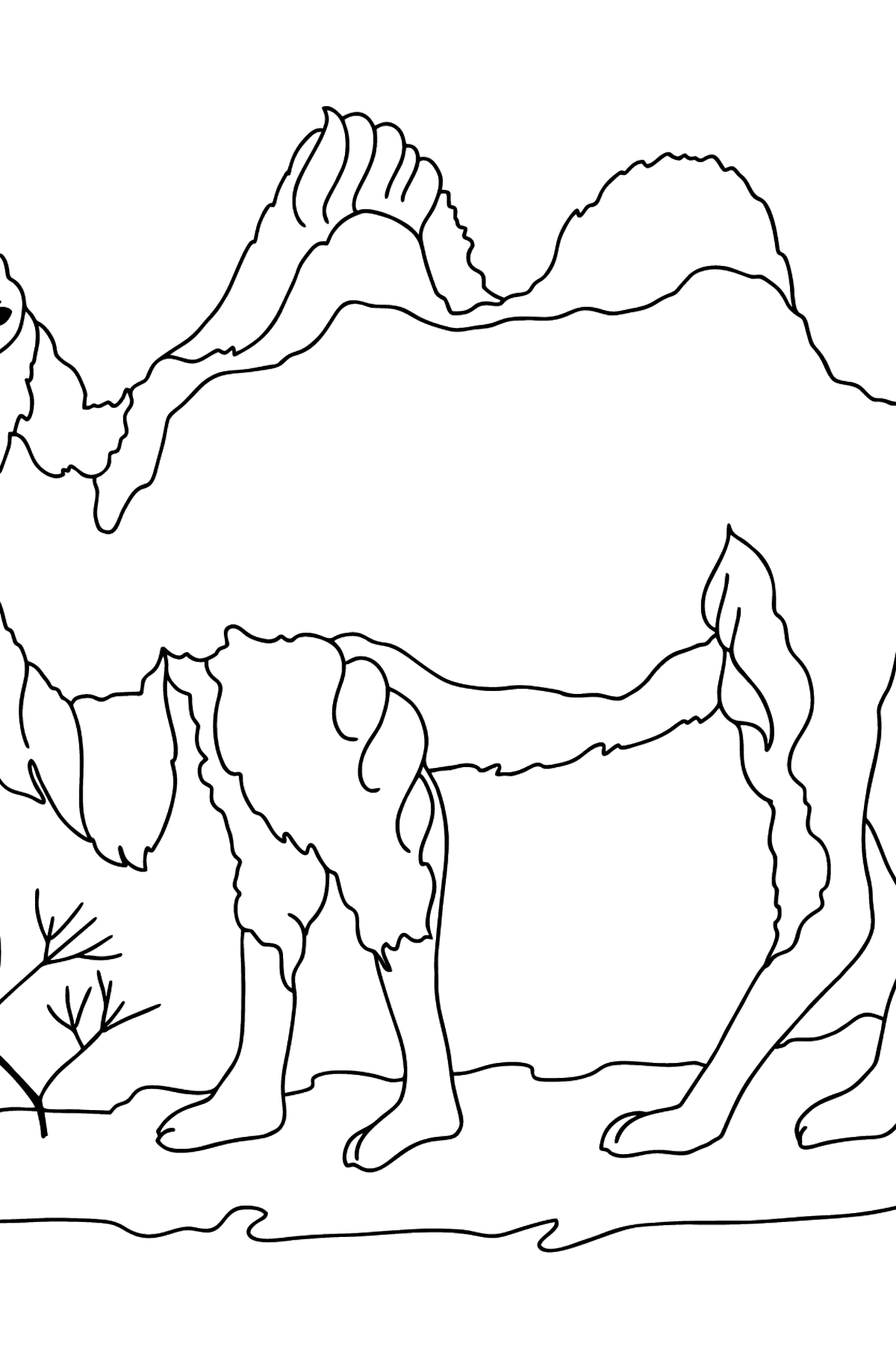 Camel Coloring Page - Coloring Pages for Kids