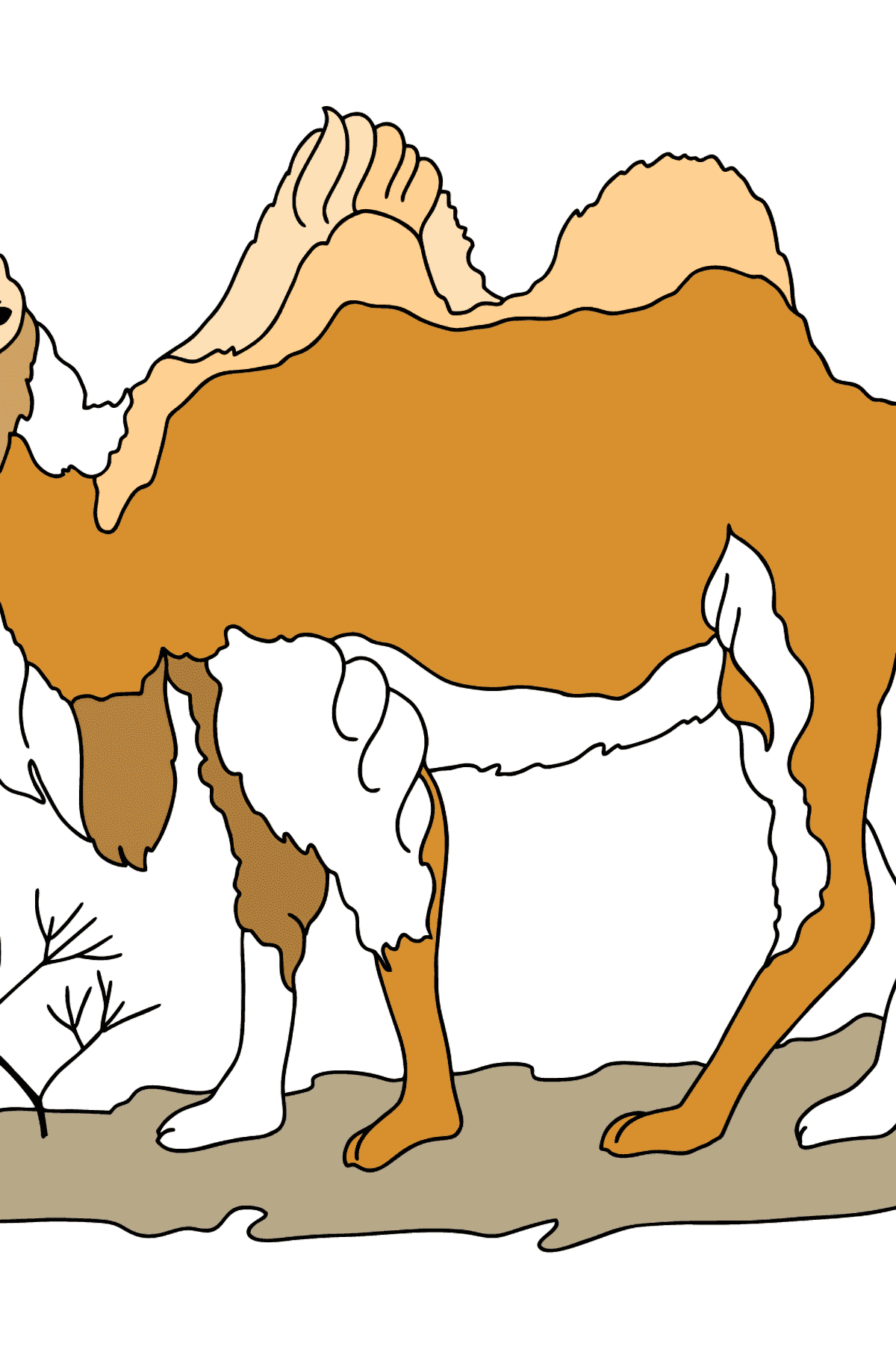 A Camel Coloring Page - Coloring Pages for Kids