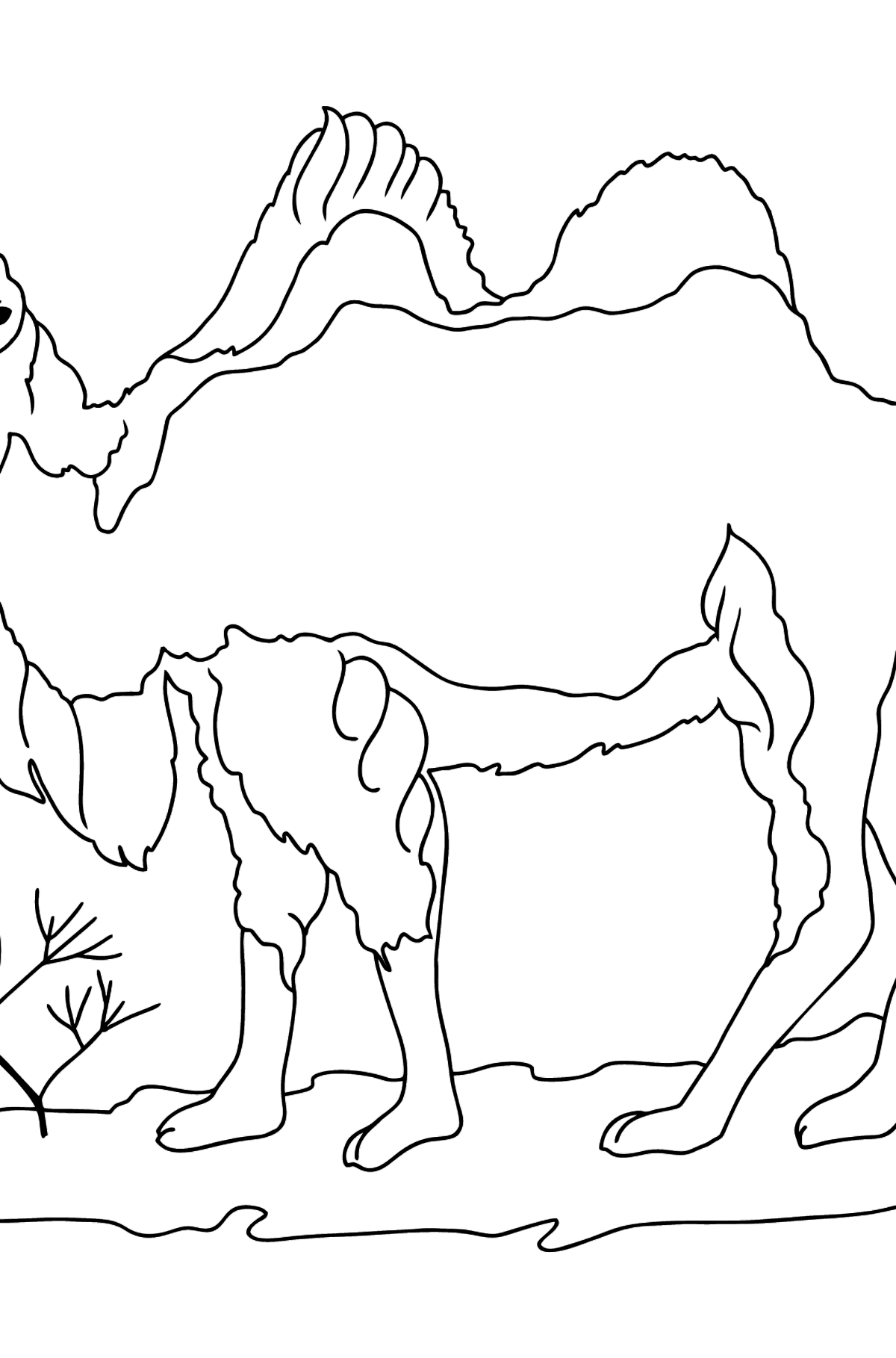 A Camel with Two Humped Coloring Page - Coloring Pages for Kids