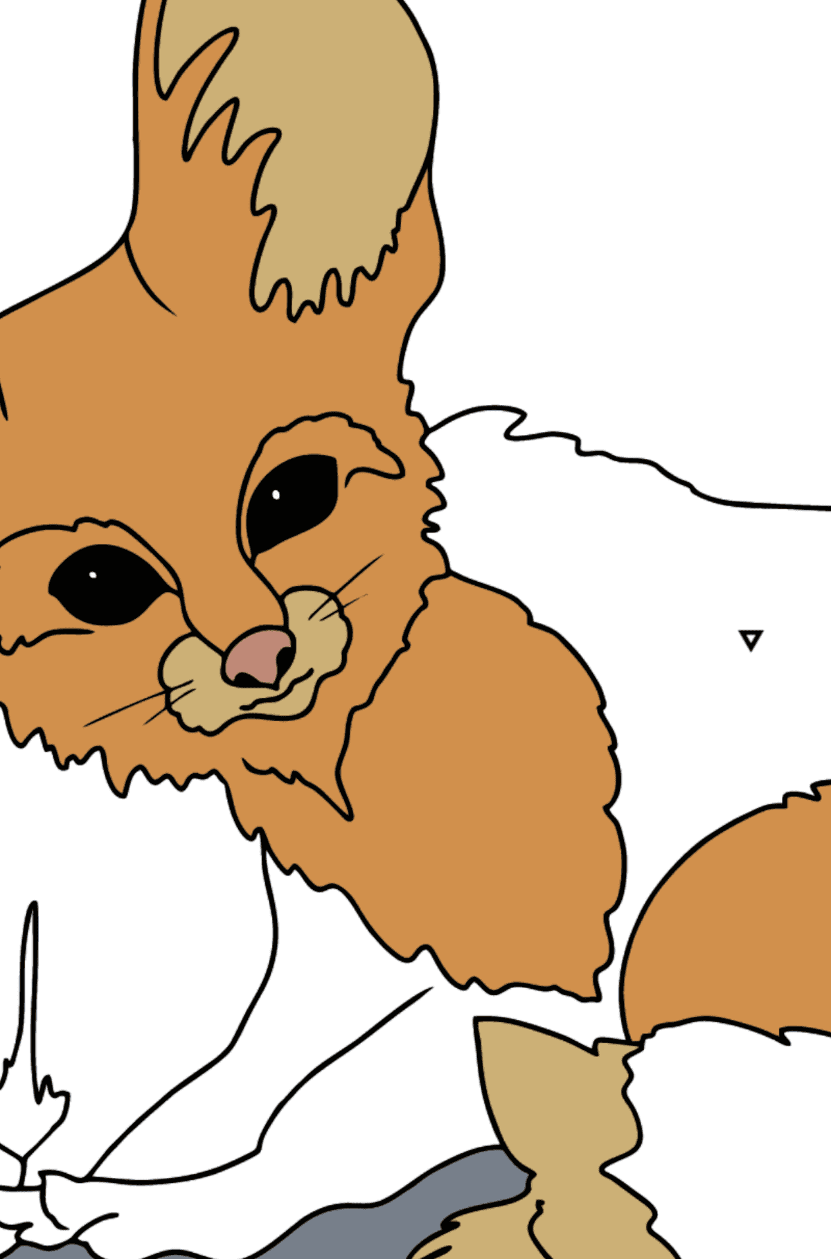 Coloring Page - A Fennec Fox or a Tiny Fox - Coloring by Symbols for Kids