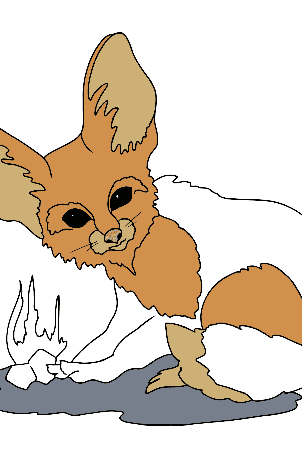 Coloring Page - A Fennec Fox or a Tiny Fox - Coloring Pages for Kids