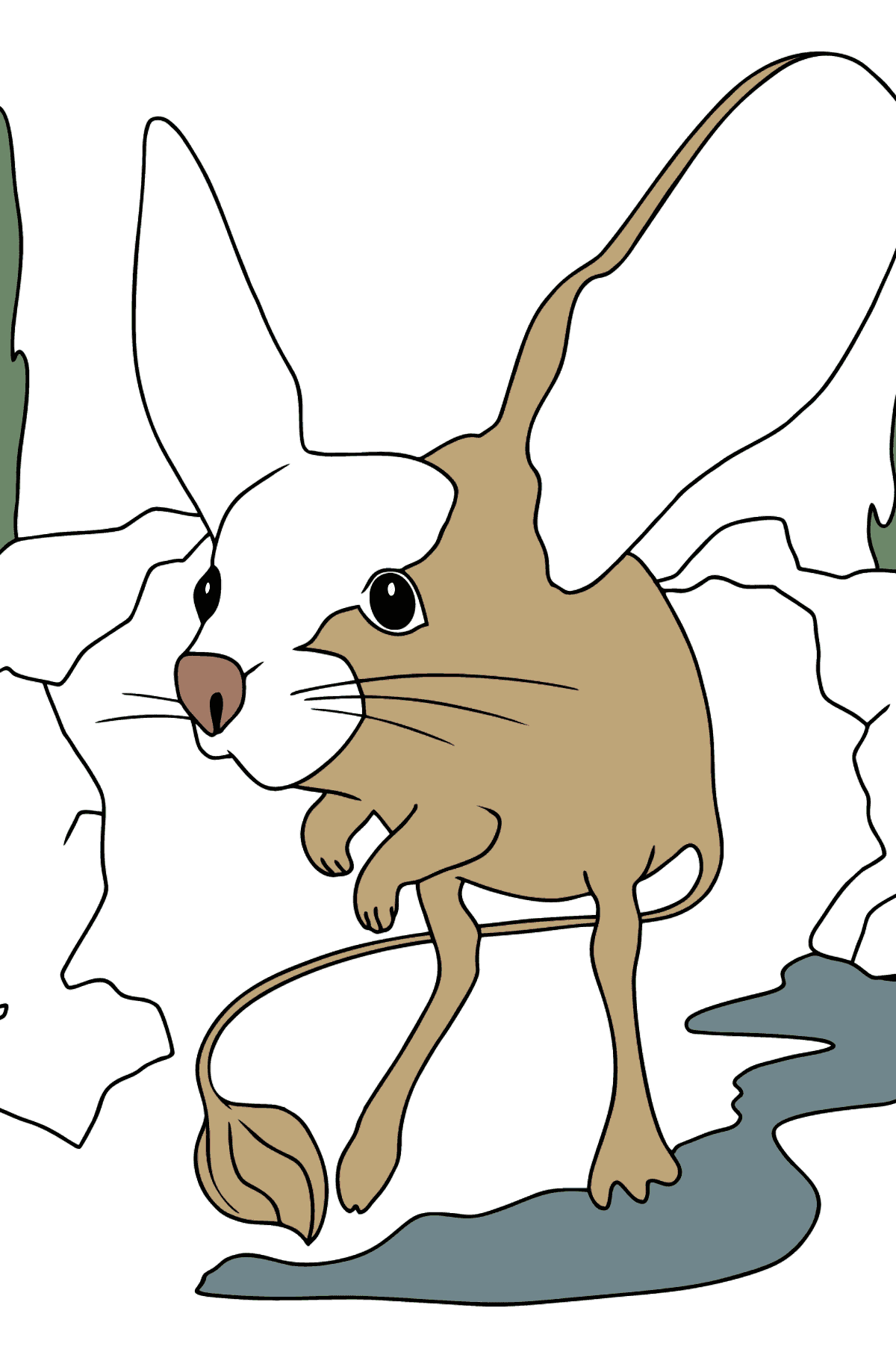 A Jerboa has a Cunning Look Coloring Page - Coloring Pages for Kids