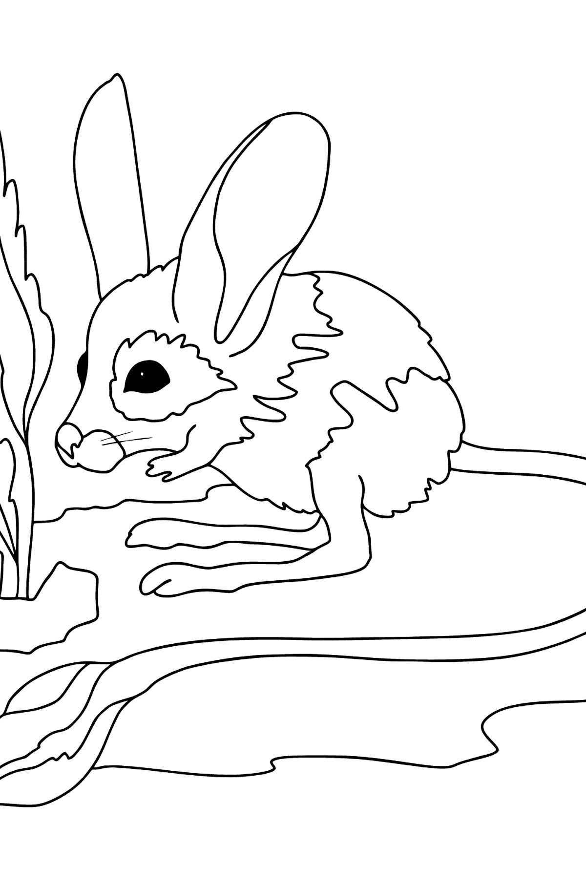 Coloring Page - A Jerboa is Looking Scared - Coloring Pages for Kids