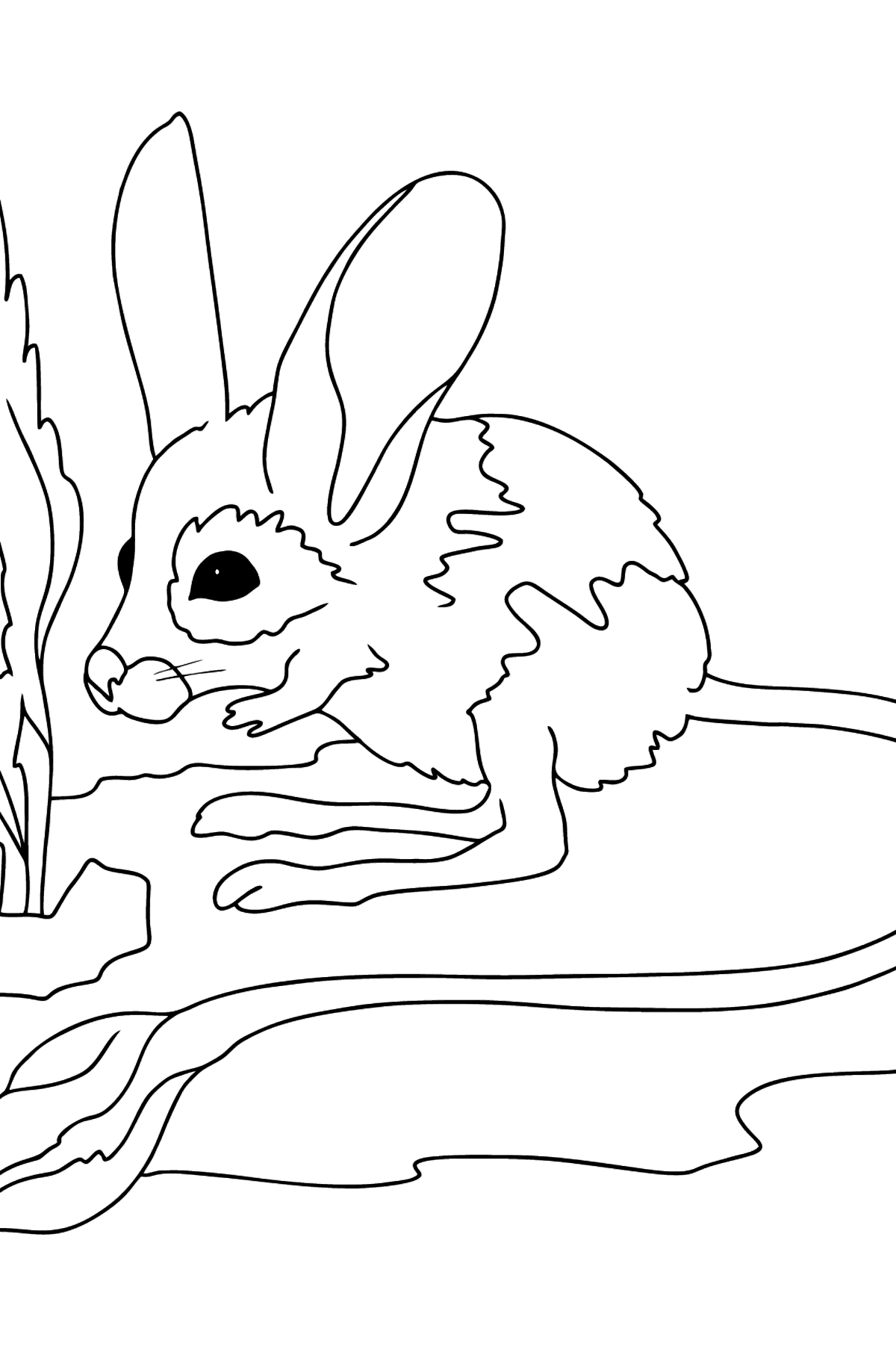 A Jerboa is Standing on its Long Hind Legs Coloring Page - Coloring Pages for Kids