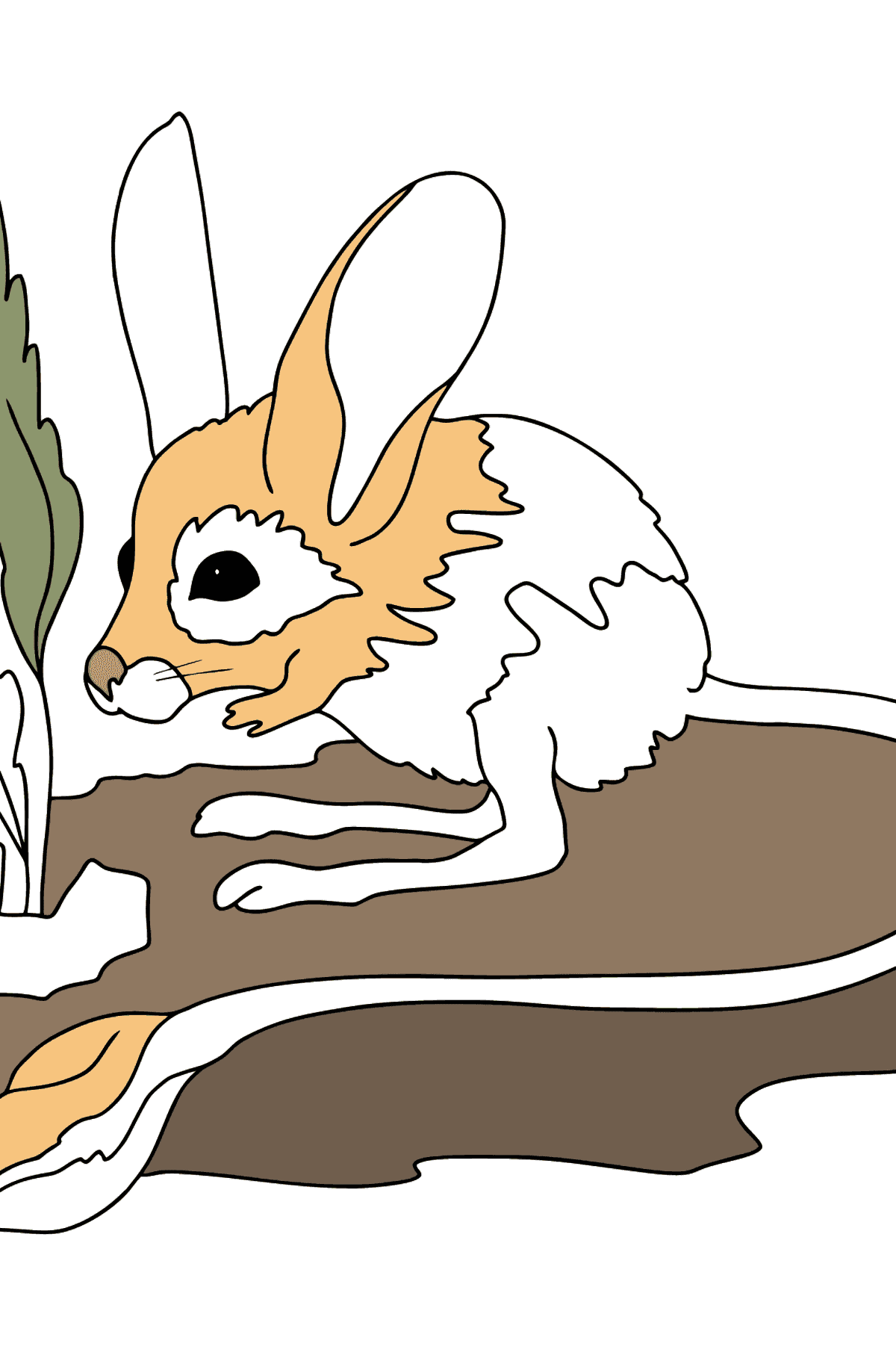Coloring Page - A Jerboa with Long Legs and a Long Tail - Coloring Pages for Kids