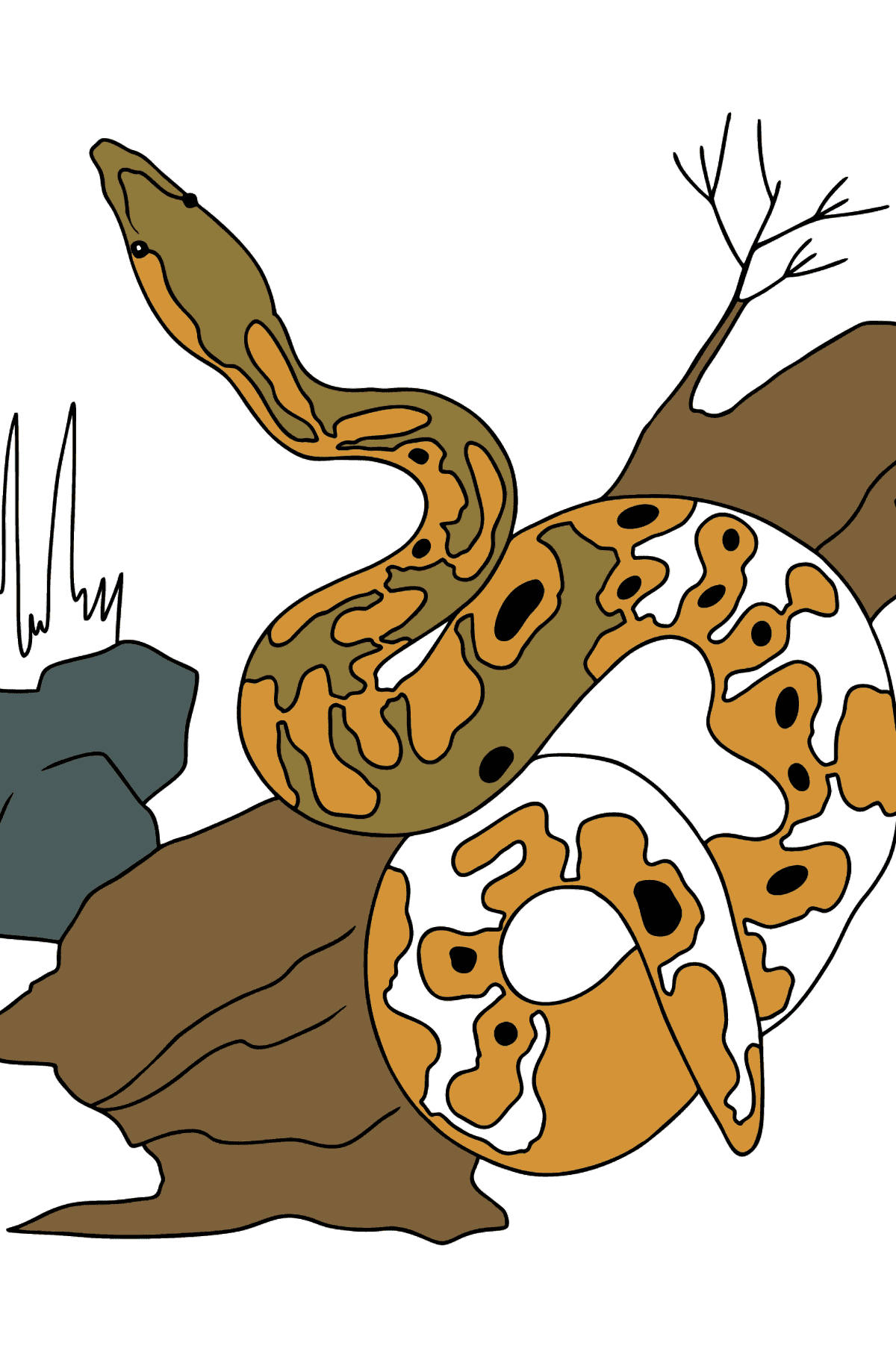 A Snake on the Hunt Coloring Page - Coloring Pages for Kids
