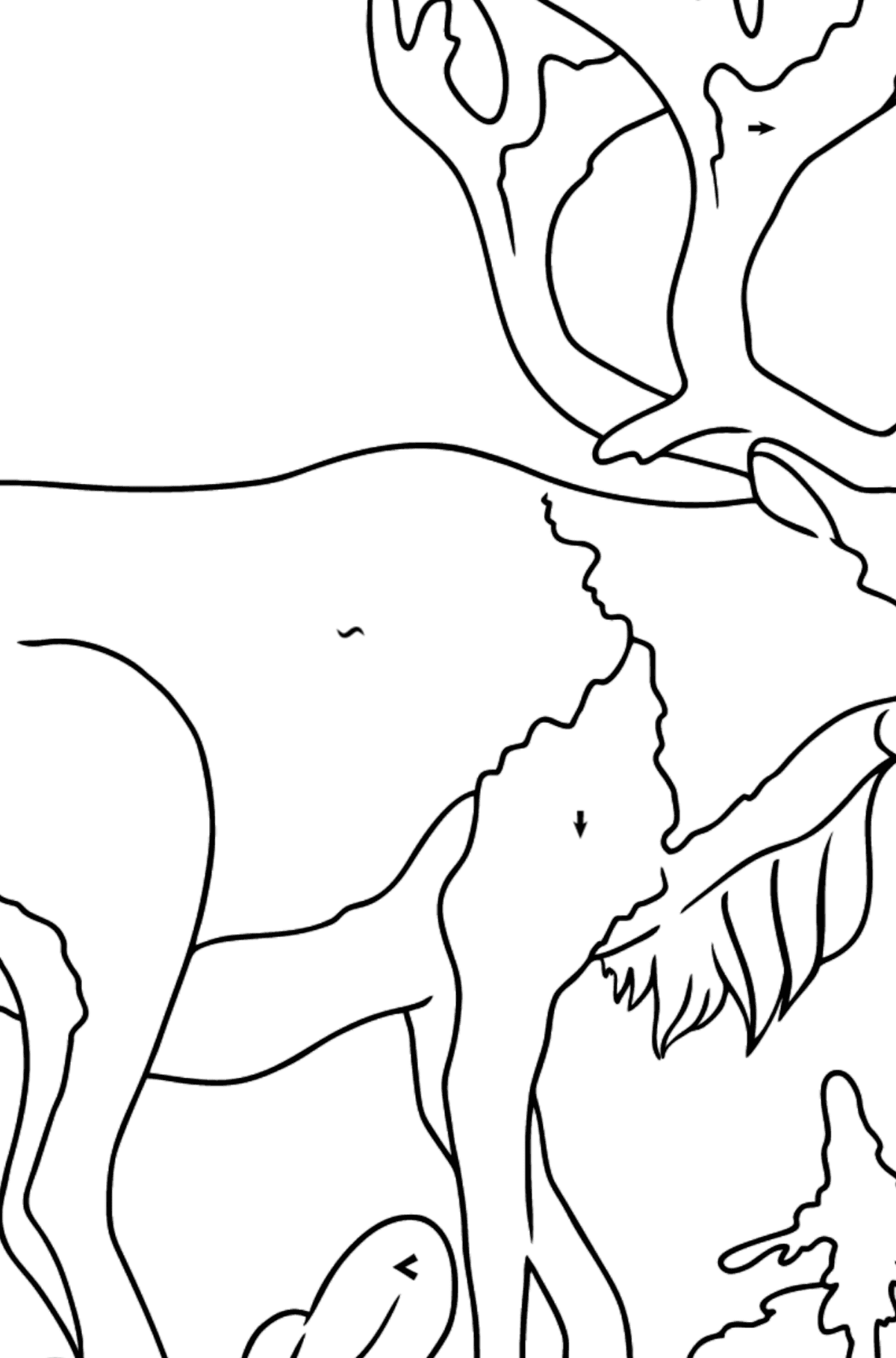 Coloring Page - A Deer with Beautiful Antlers - Coloring by Symbols for Kids