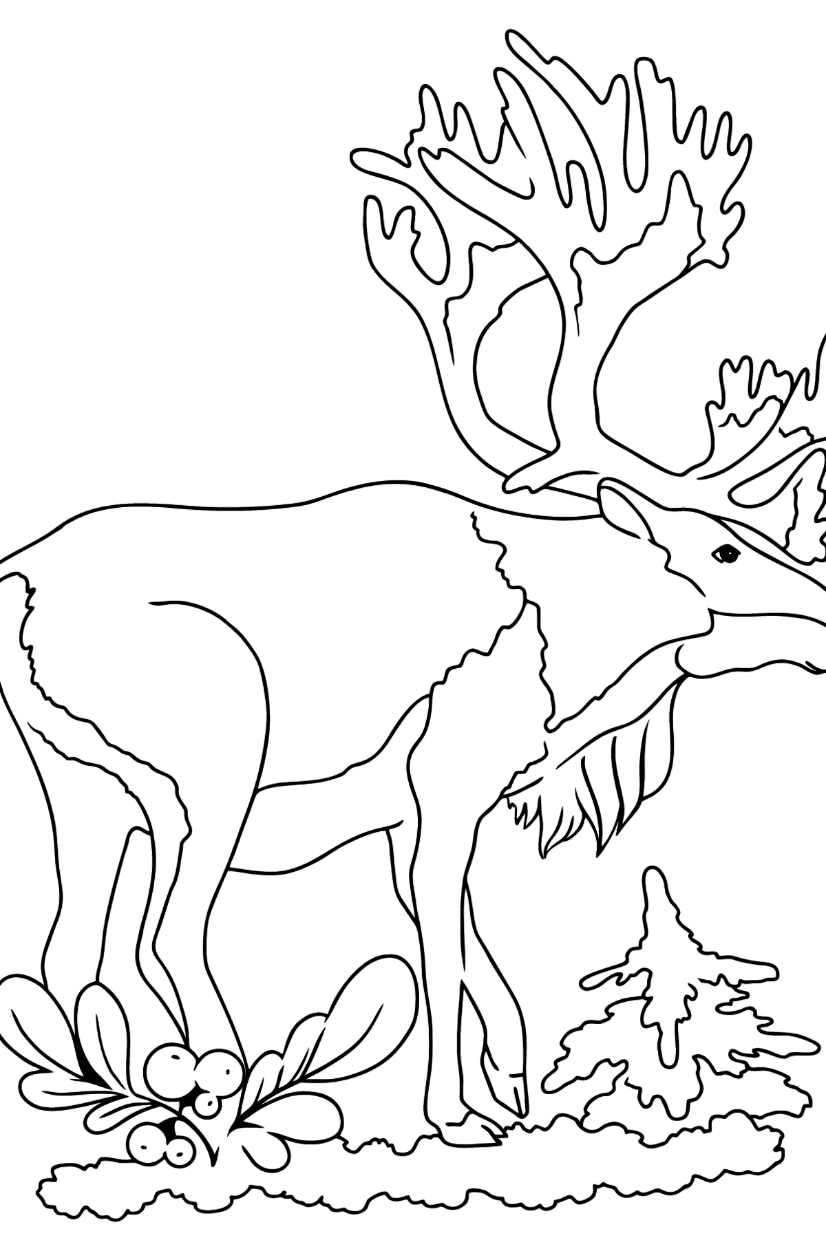Coloring Page - A Deer with Beautiful Antlers - Coloring Pages for Kids
