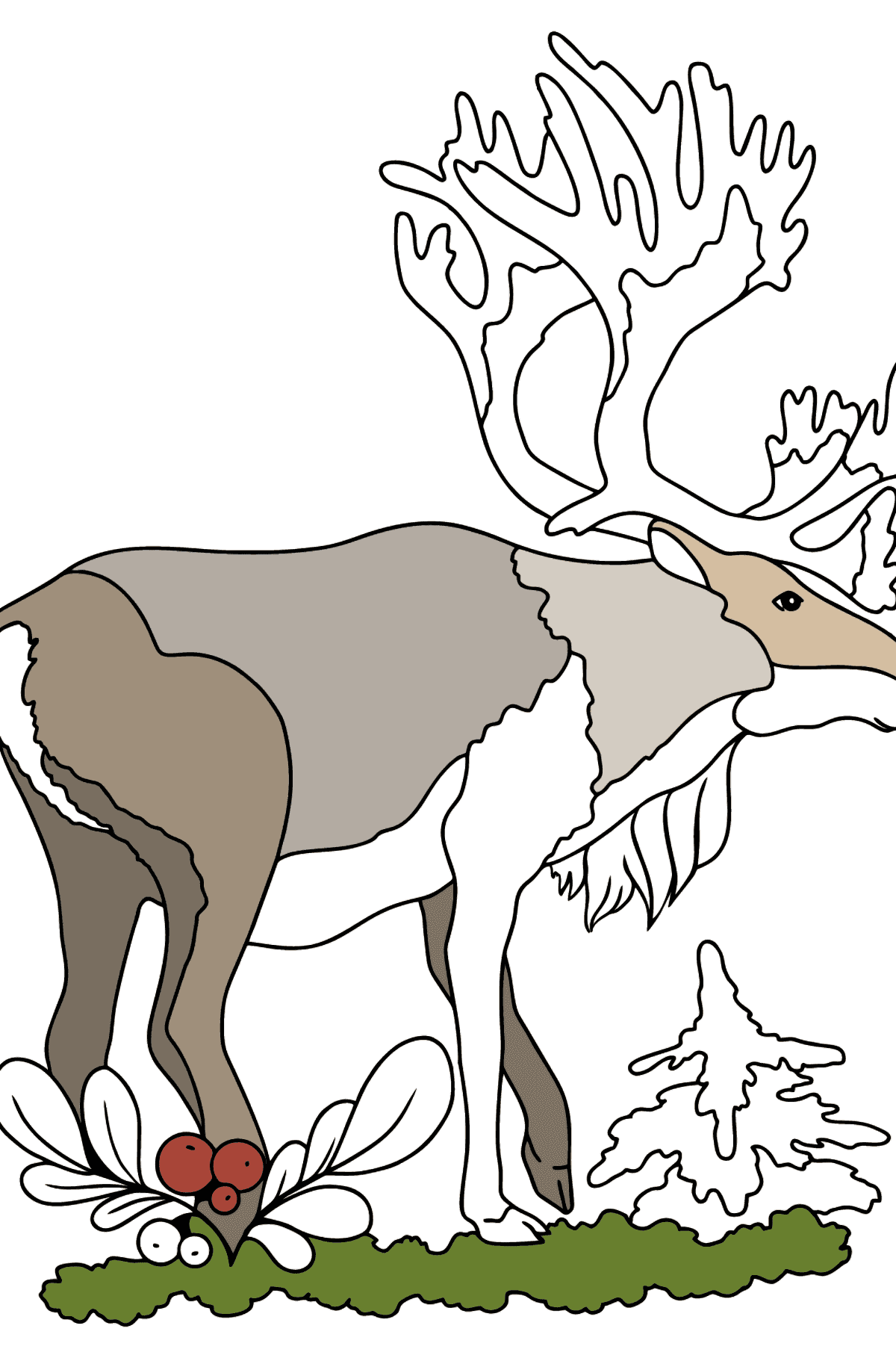 Coloring Page - A Noble Deer - Coloring Pages for Kids