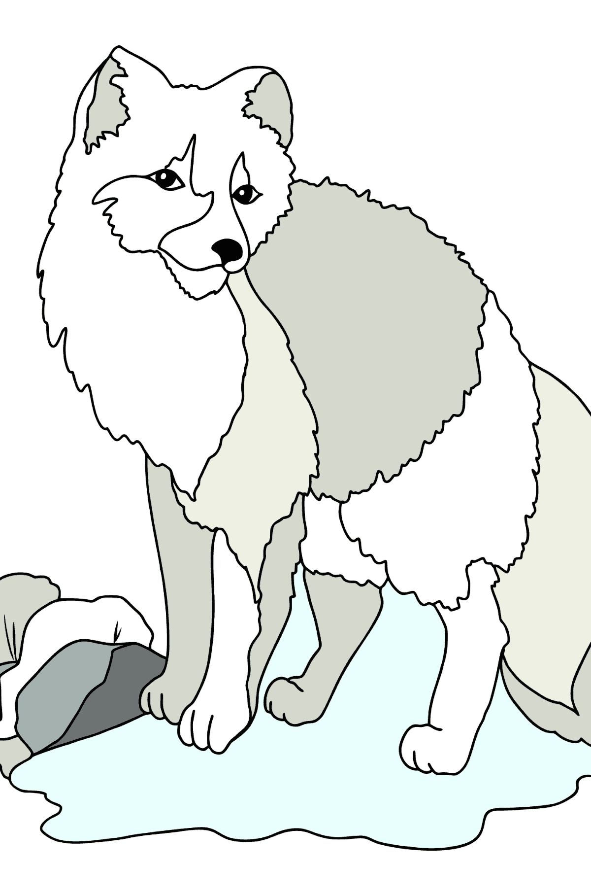 Coloring Page - A White Arctic Fox - Coloring Pages for Kids