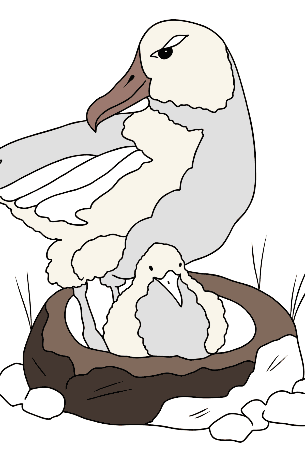 Coloring Page - An Albatross is Taking Care of a Nestling - Coloring Pages for Kids