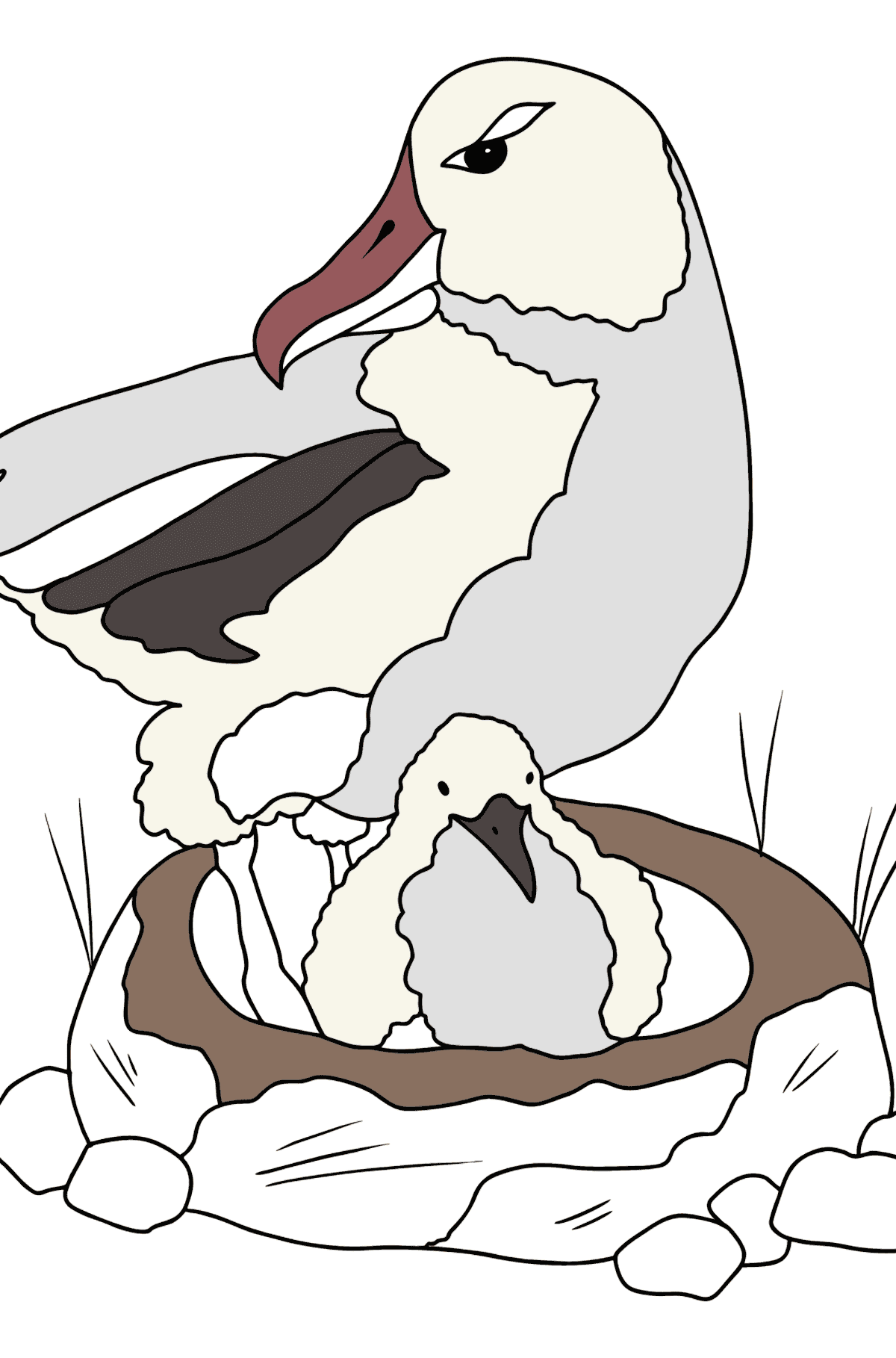 Coloring Page - An Albatross with a Nestling - Coloring Pages for Kids