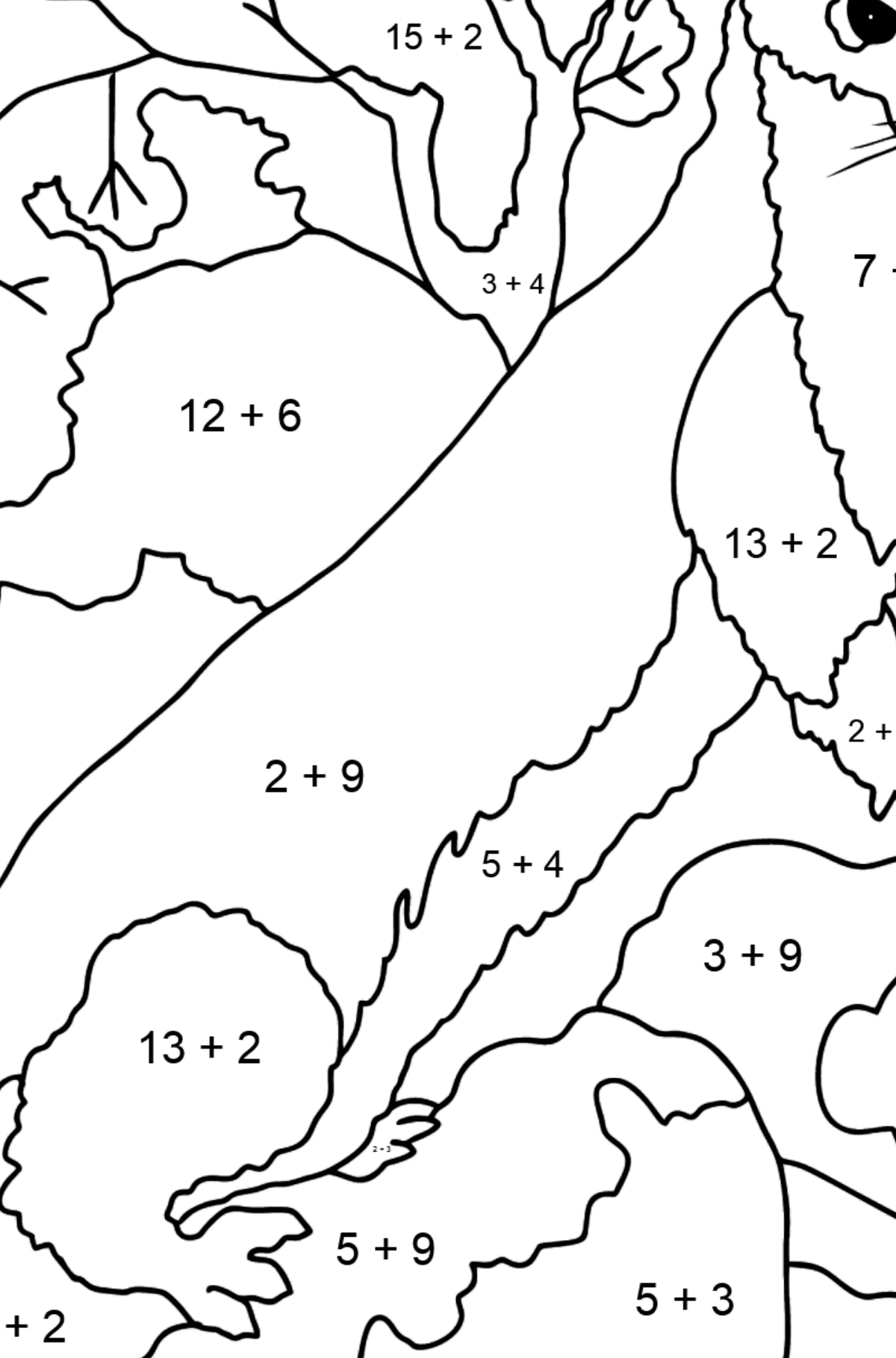 Coloring Page - An Ermine - A Sly Hunter - Math Coloring - Addition for Kids