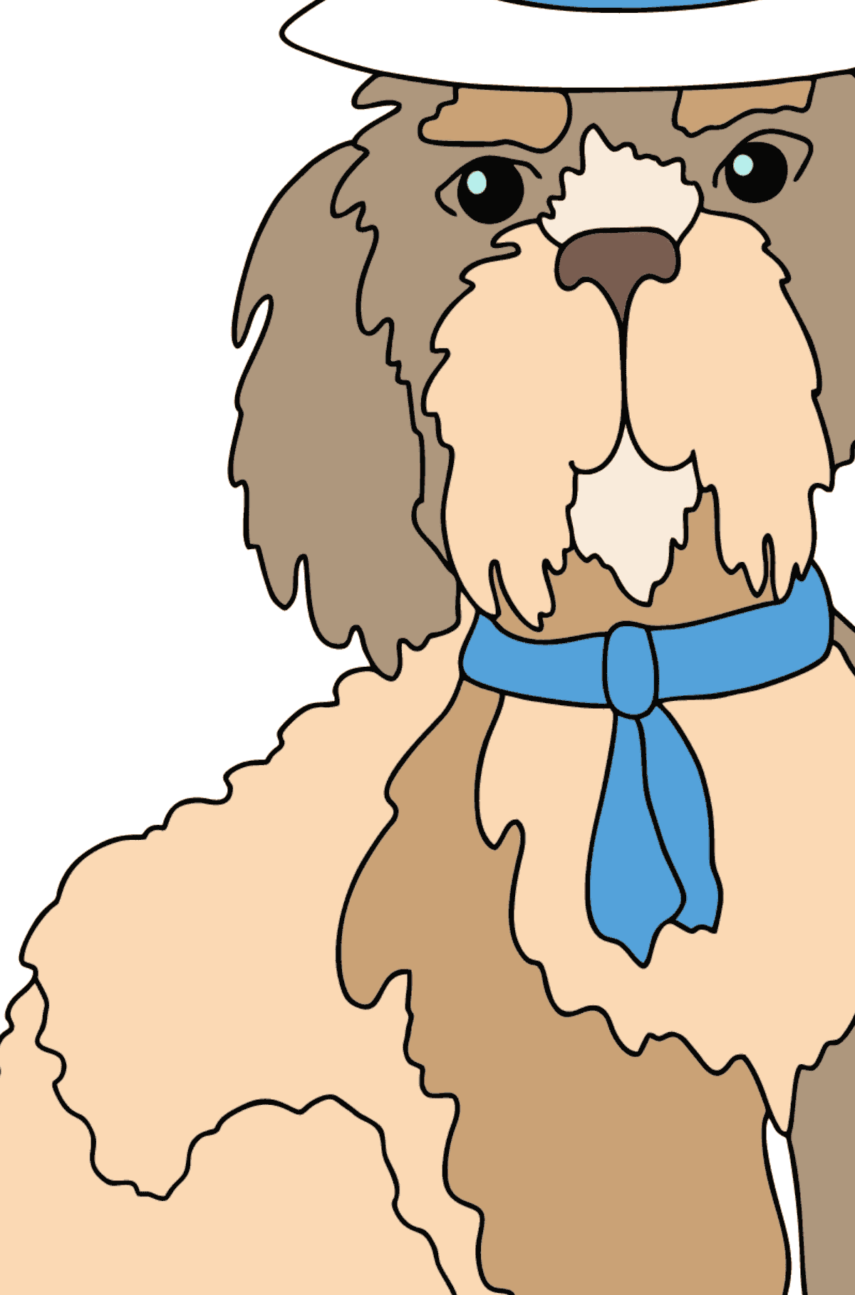 Coloring Page - A Dog in a Beautiful Hat for Kids  - Color by Geometric Shapes