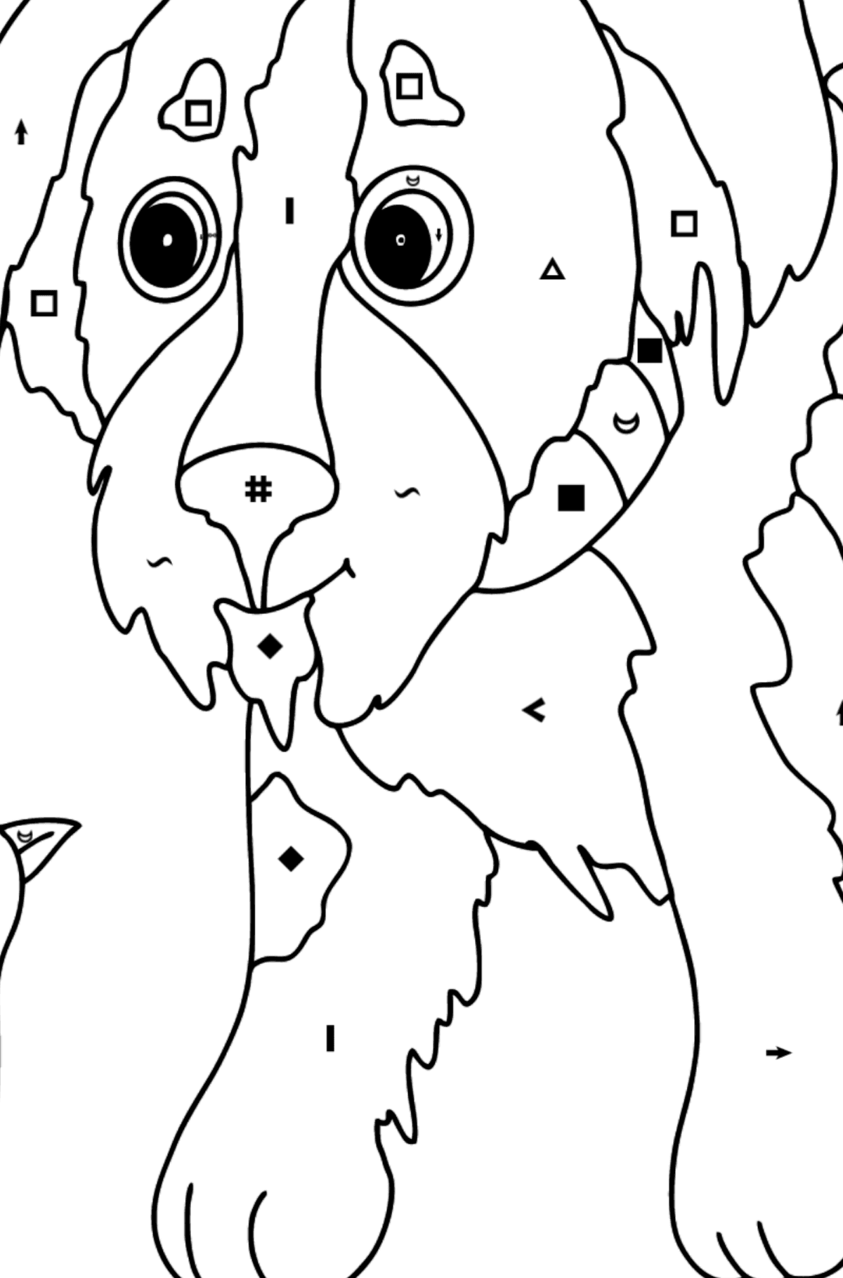 Coloring Page - A Dog is Playing with a Bird - Coloring by Symbols for Kids