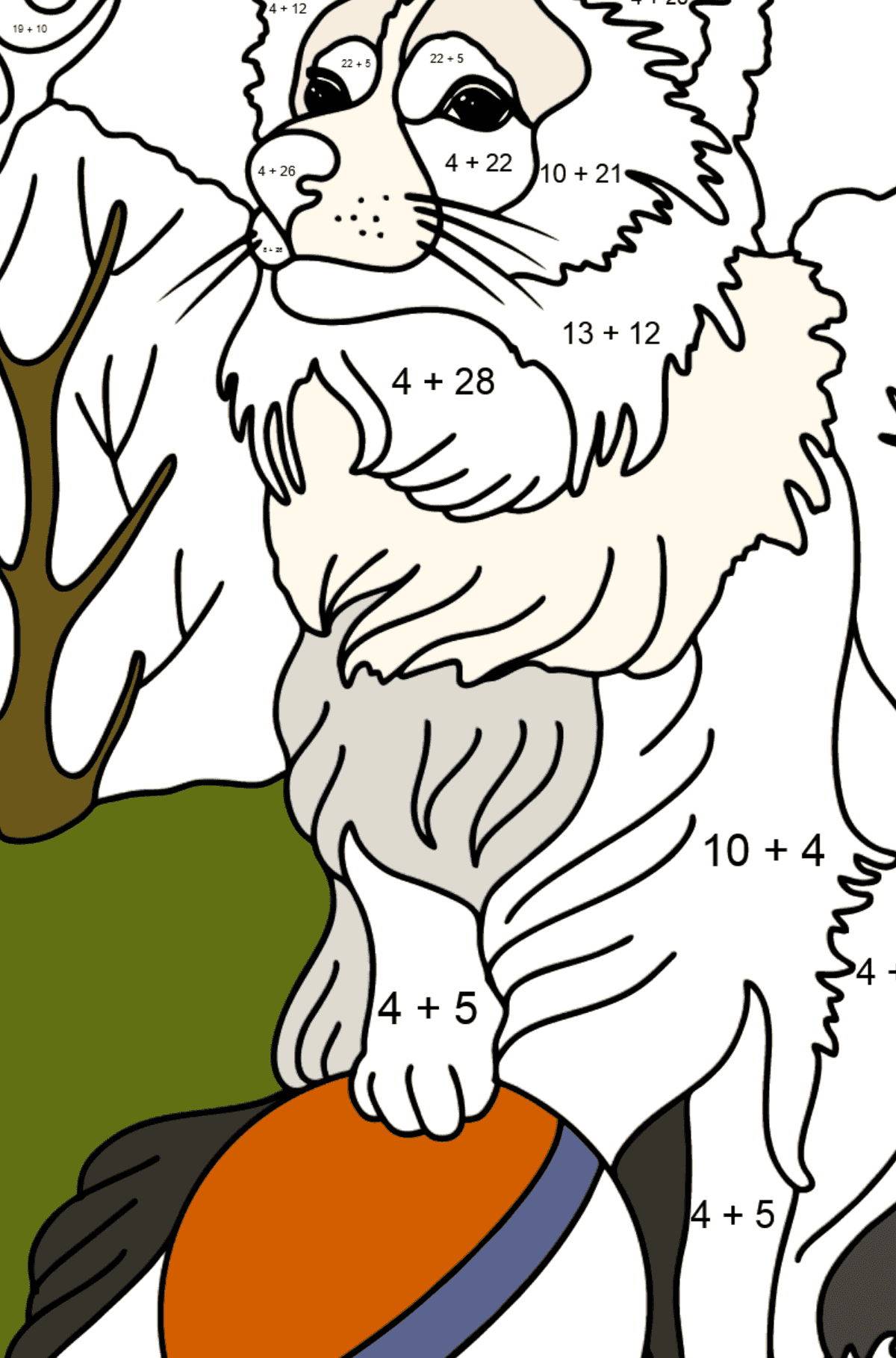 Collie coloring page - Math Coloring - Addition for Kids
